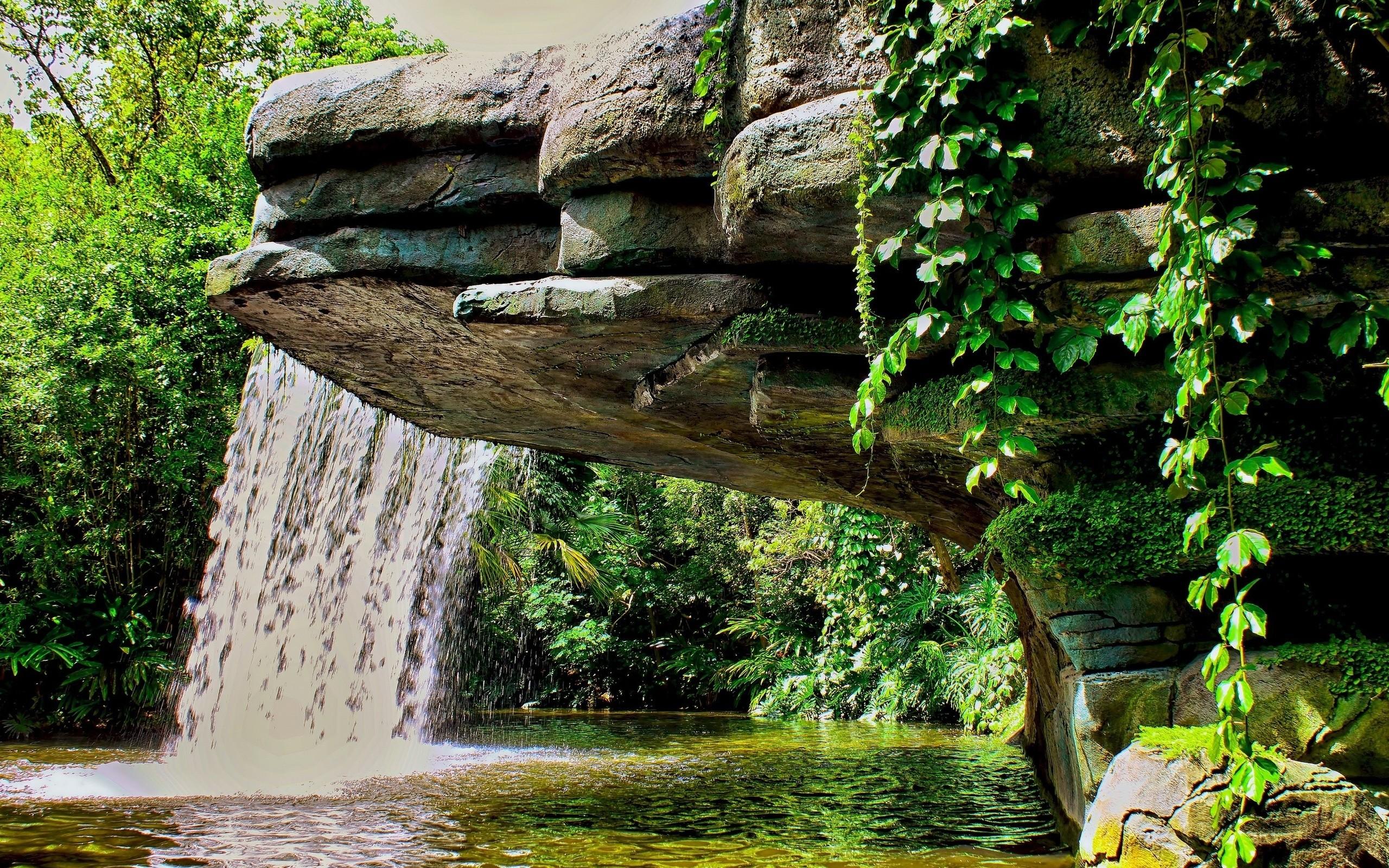 грубом картинки водоемов с водопадом взрослых человека прыгали