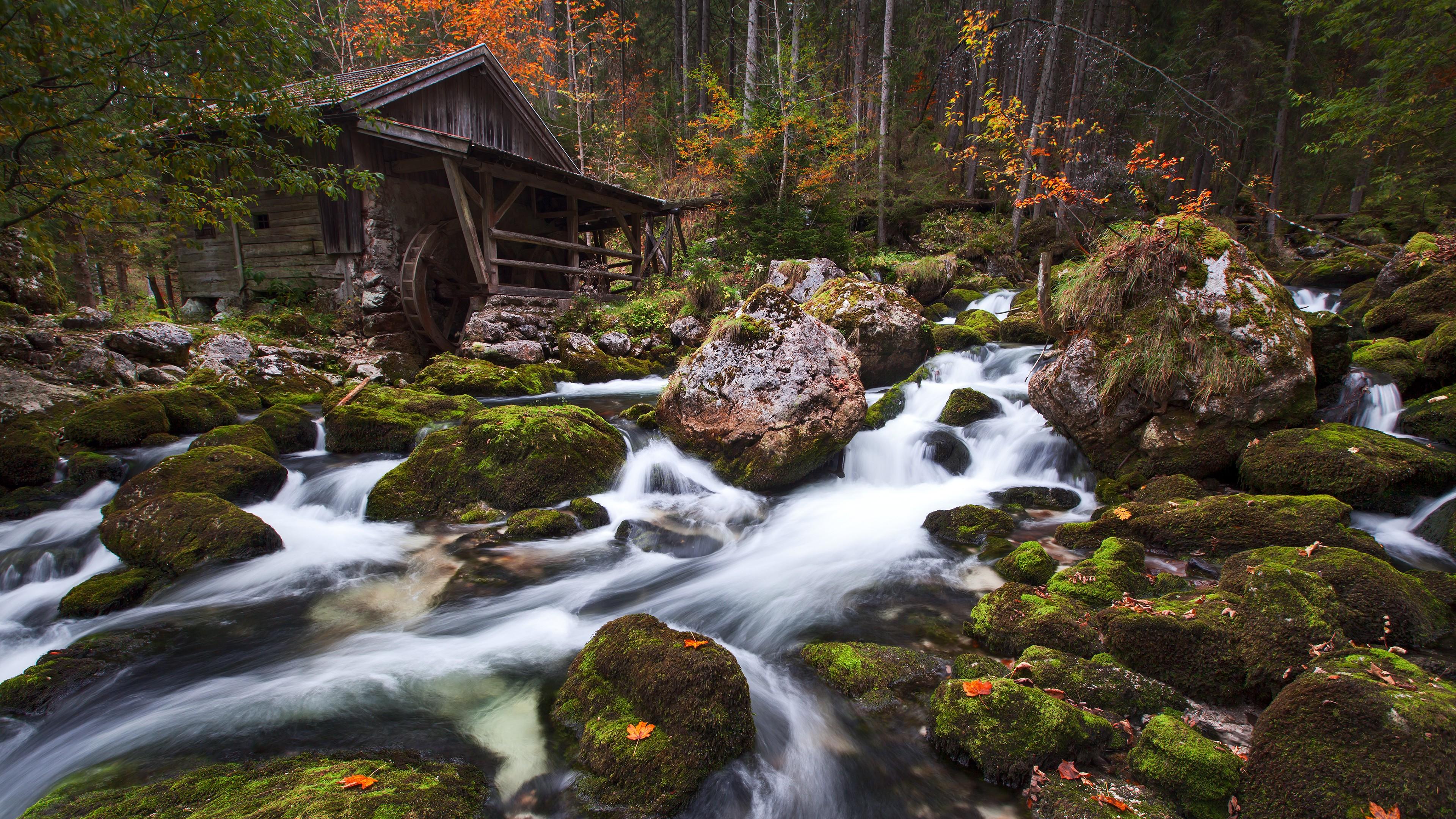 Wallpaper Landscape Forest Waterfall Rock Nature