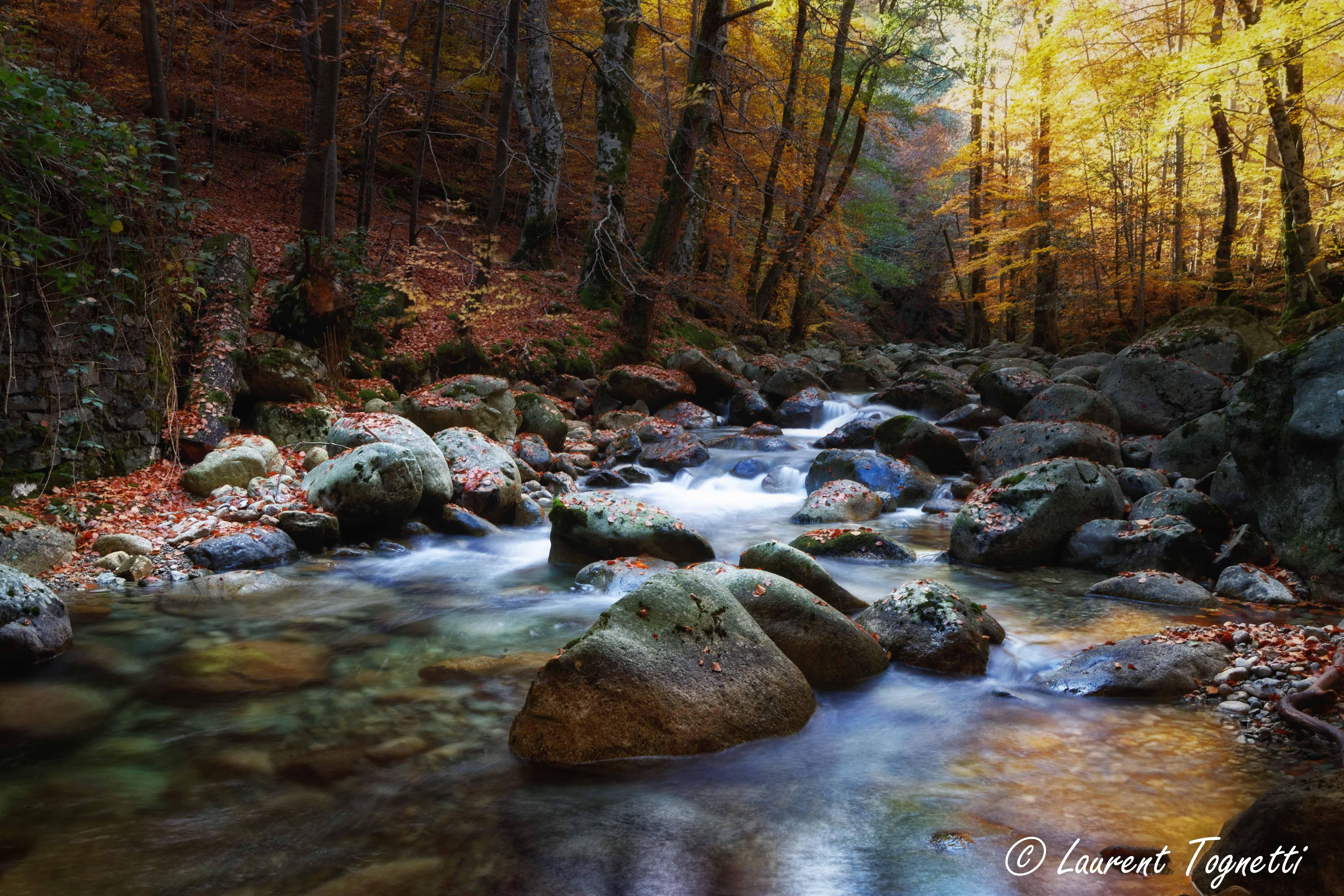 foto de Fond d'écran : paysage, forêt, cascade, Roche, la nature ...