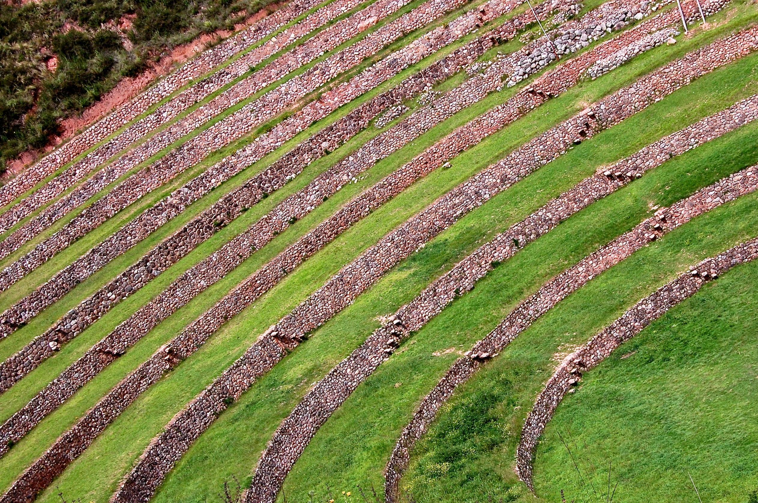 Wallpaper Landscape Field Green Circle Peru Tree