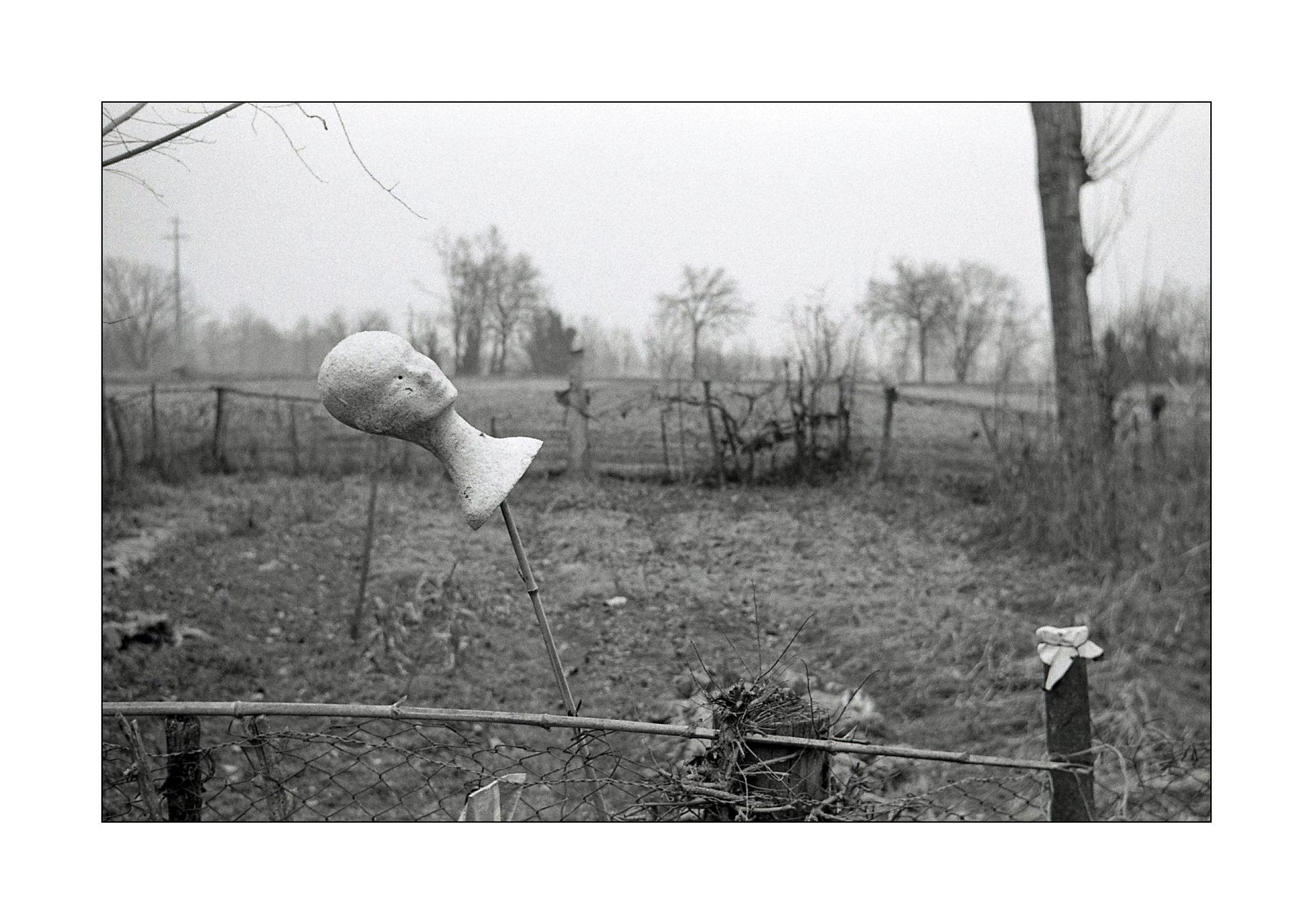 Entfernungsmesser Für Fotografie : Hintergrundbilder : landschaft einfarbig gras fotografie kamera