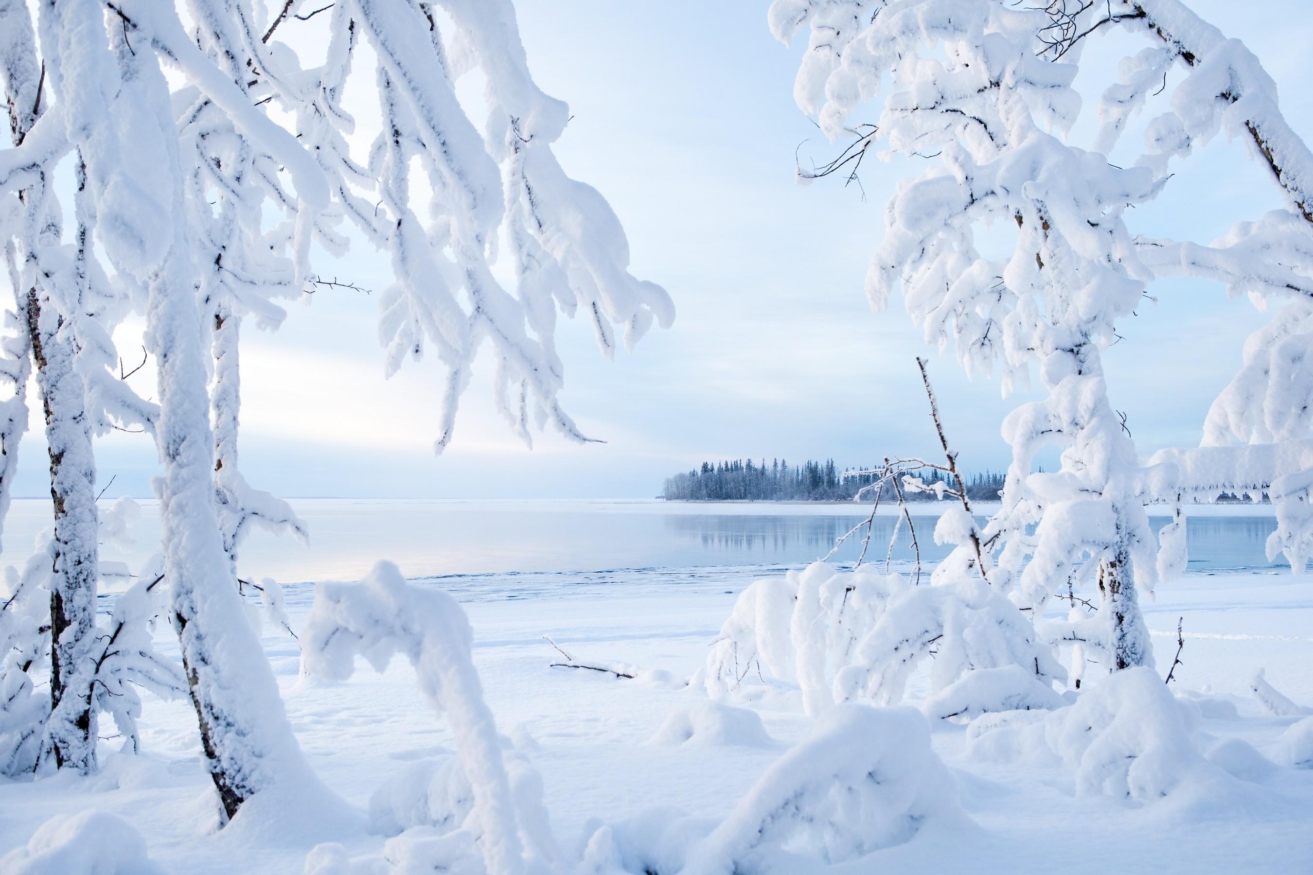 Sfondi paesaggio natura la neve inverno ghiaccio for Immagini inverno sfondi