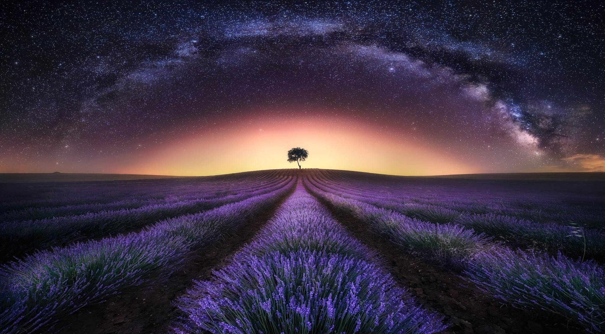 Картинки поле ночь