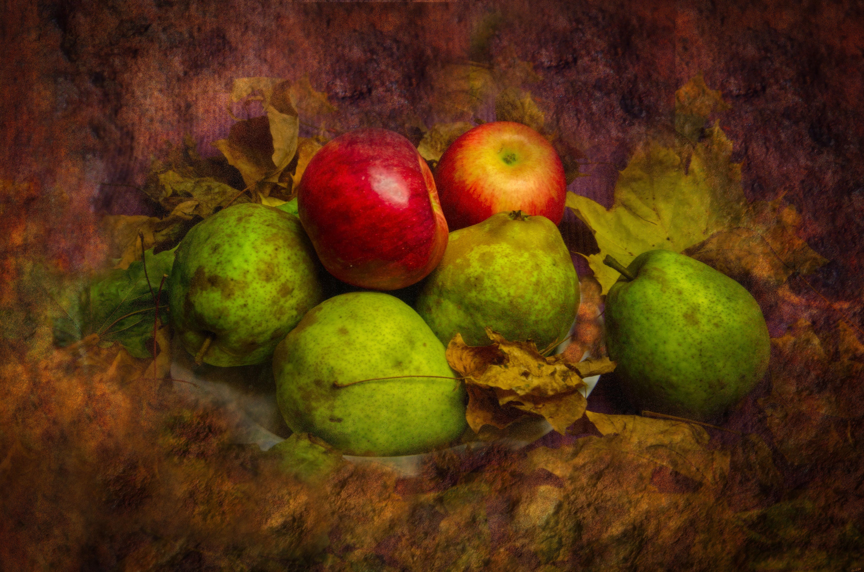 Hintergrundbilder : Landschaft, Malerei, Blätter, Natur, Kunstwerk ...