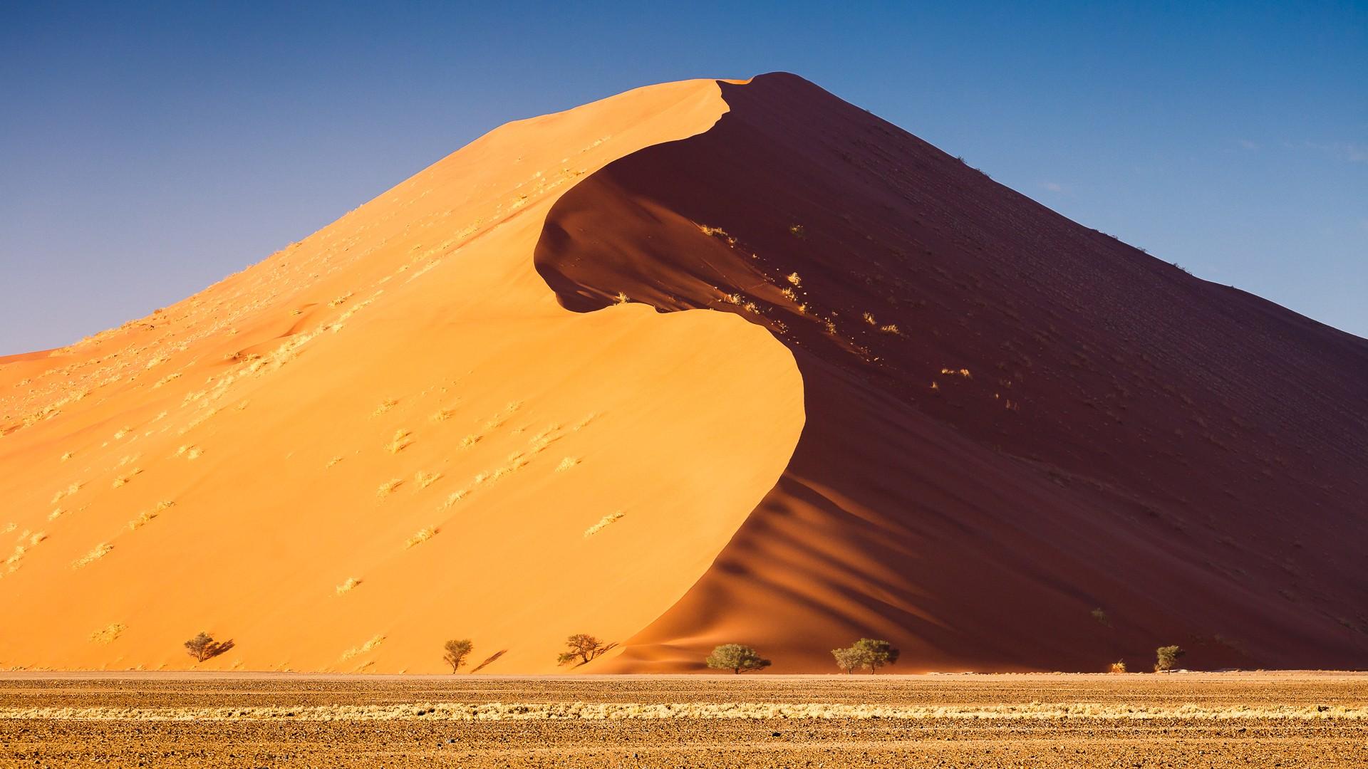 пока песчаные пустыни картинки разноцветного ламината приемы
