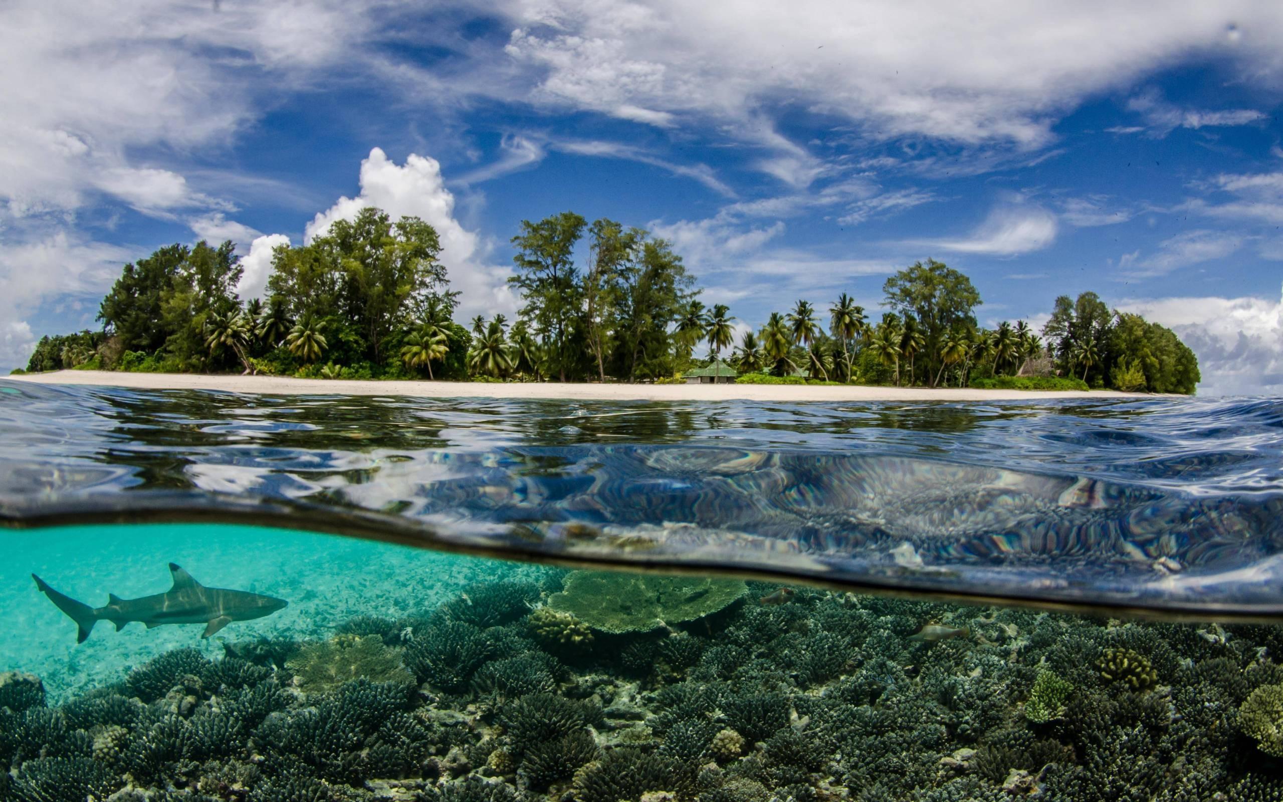 прозрачное озеро море фото игры