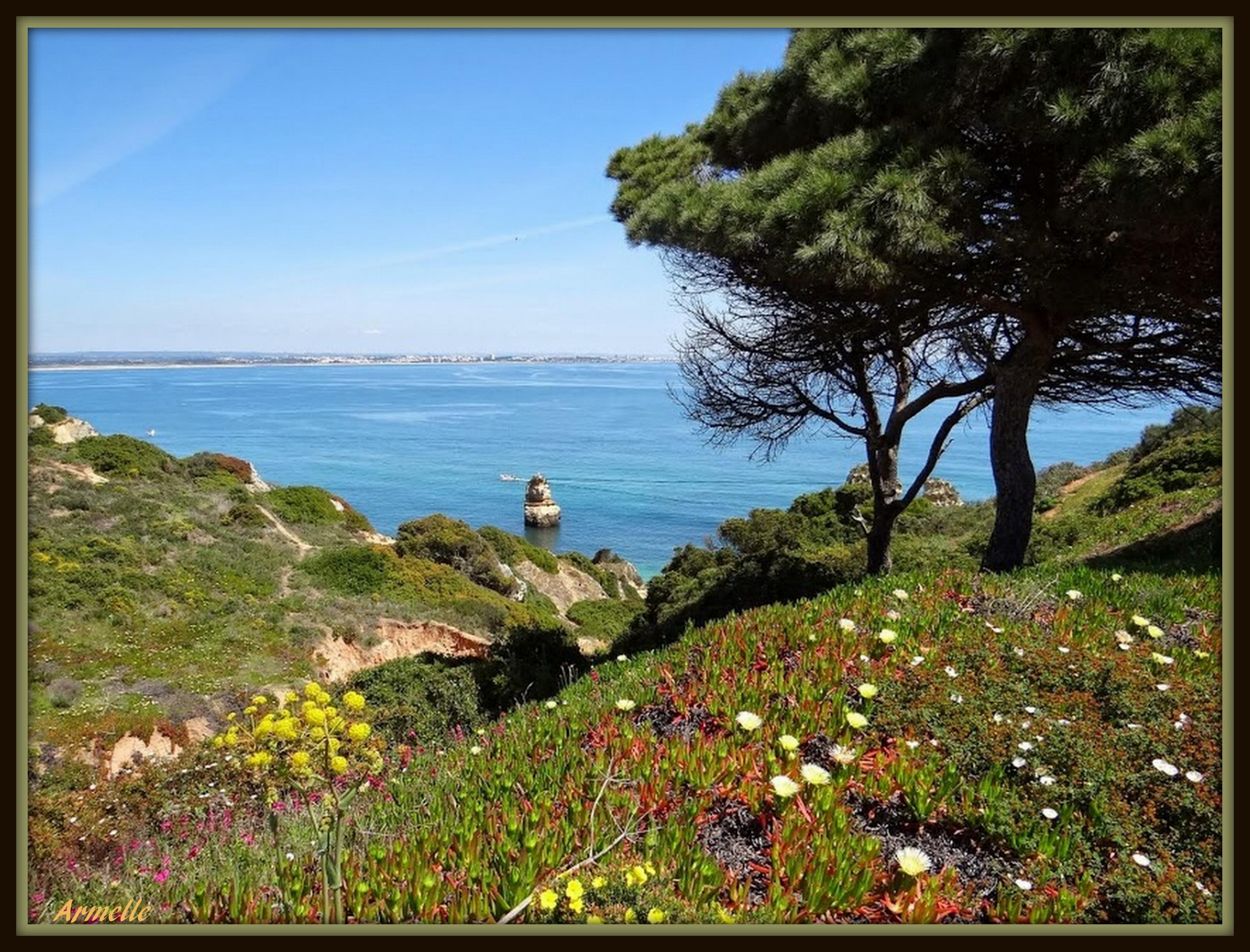 Fond d 39 cran paysage mer baie eau roche la nature for Agence cap paysages