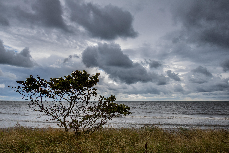 Wallpaper Pemandangan Laut Air Alam Pantai Langit Pagi