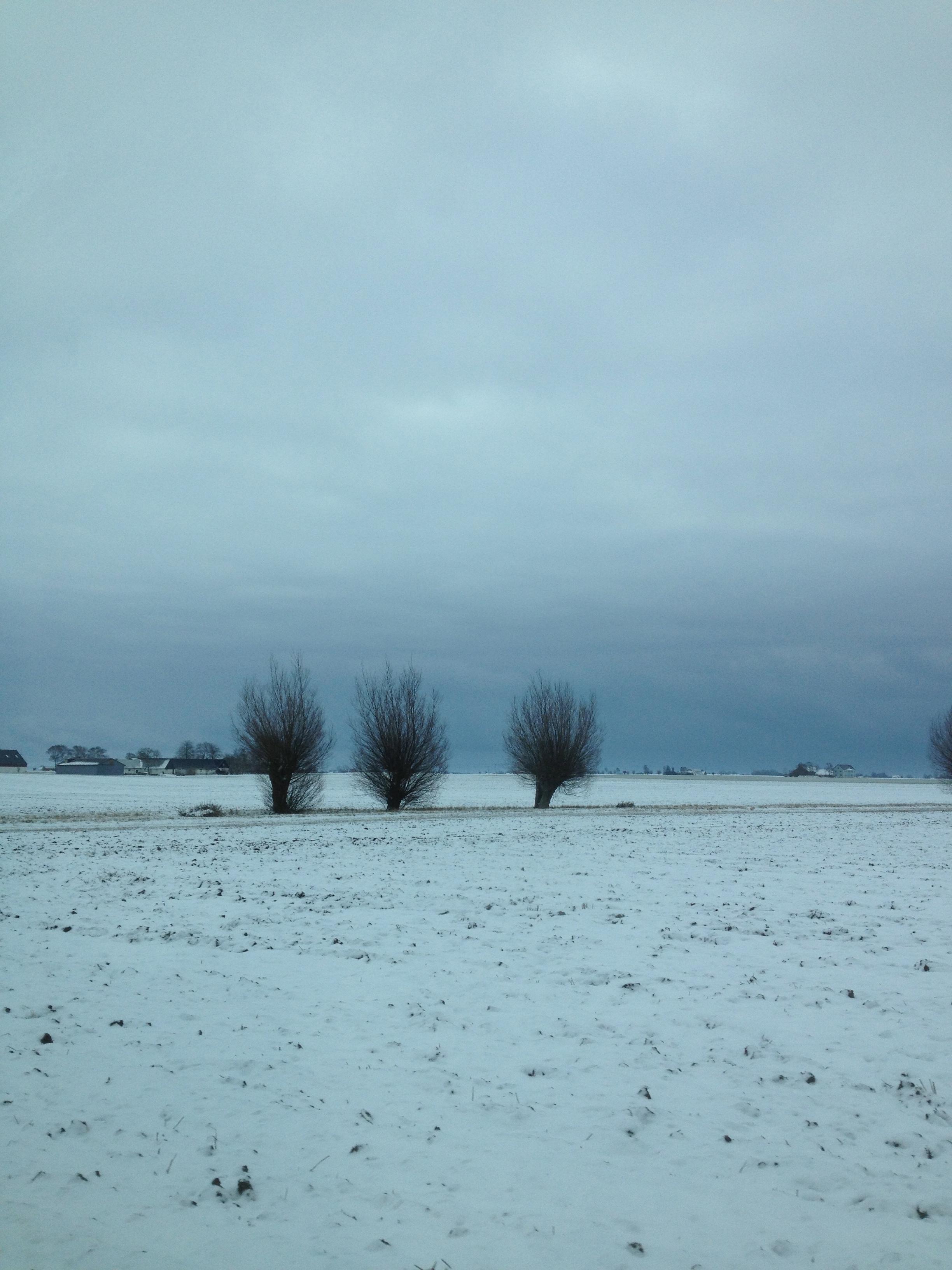 Sfondi Paesaggio Mare Acqua Puntellare Sabbia Cielo La Neve