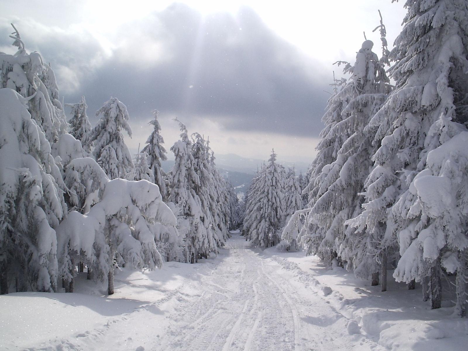 артистка фото и стихи о зиме этом