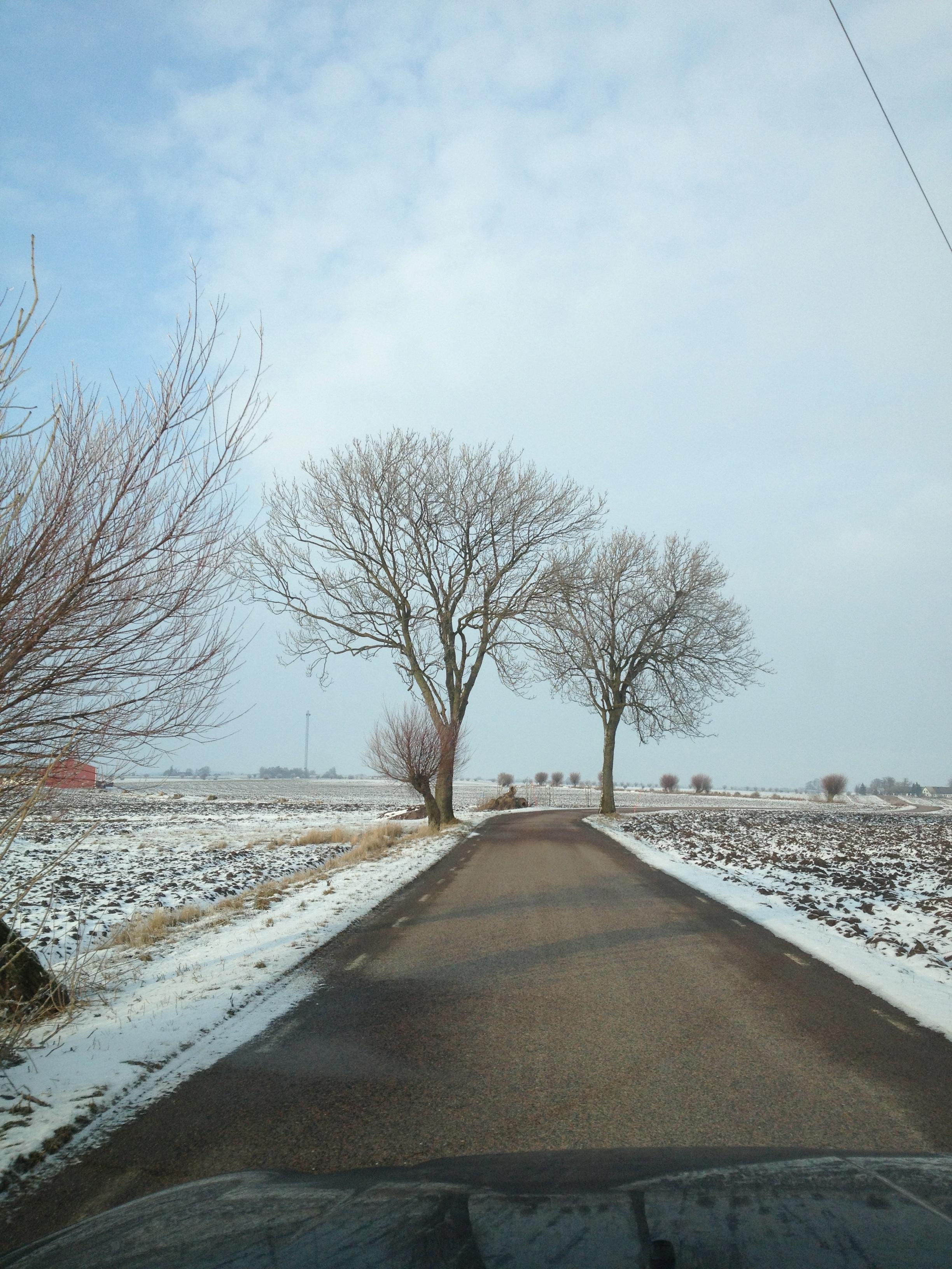 Fond D Ecran Paysage Neige Hiver Route La Glace Matin