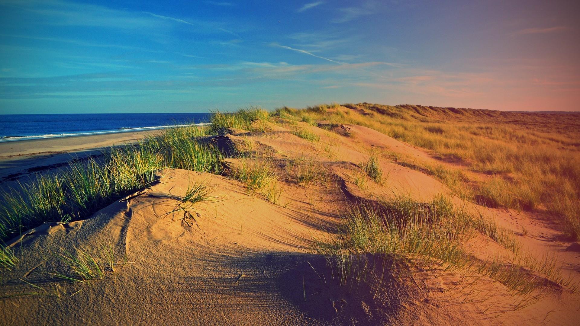 Дикий пляж фото дюны