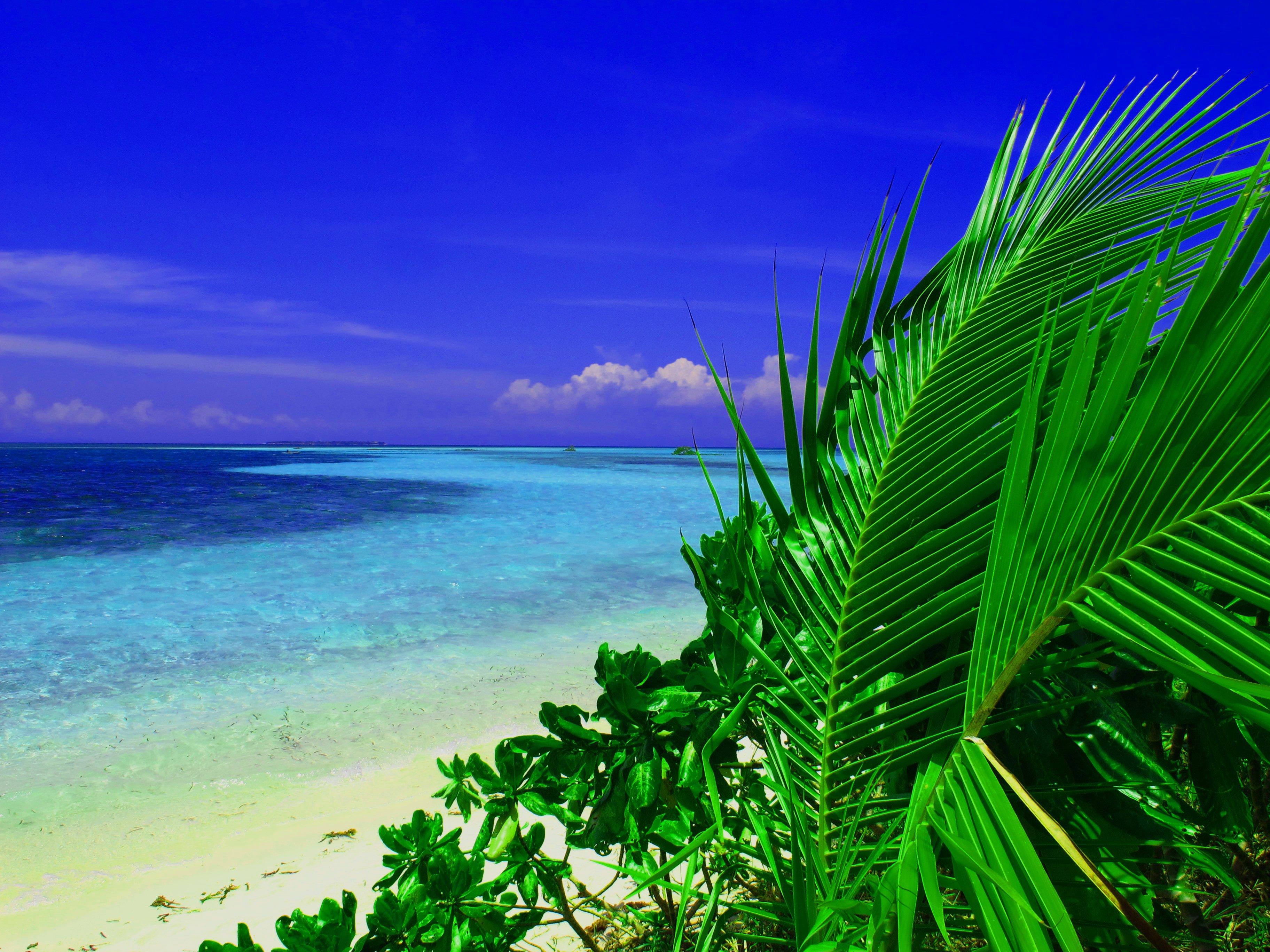 デスクトップ壁紙 風景 白 自然 海岸 砂 空 雲 ビーチ