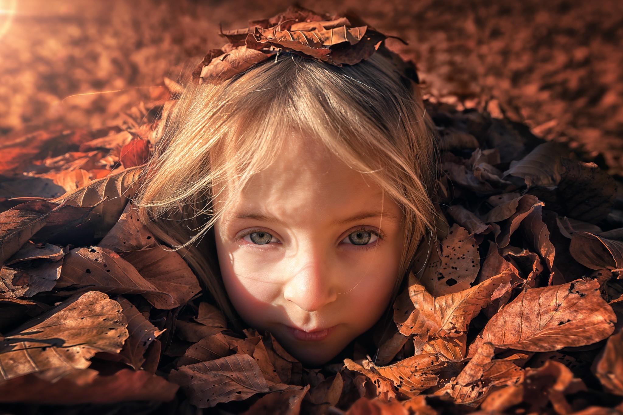 Wallpaper Leaves Model Blonde Blue Eyes Children Emotion Spring Skin Head Dry Autumn Child Flower Girl Beauty Eye Woman Lady Darkness Portrait Photography Close Up 2048x1365 Sergiucoj 86776 Hd Wallpapers Wallhere