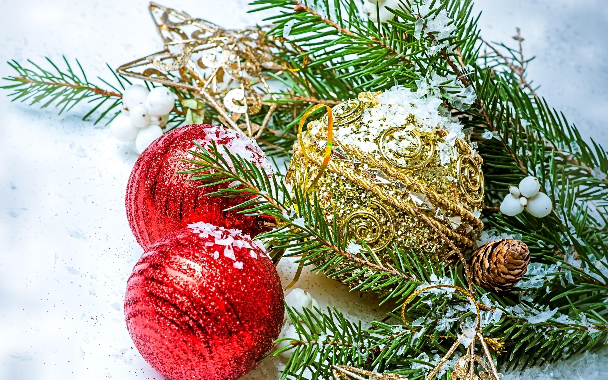 Fondos de pantalla hojas nieve rama picea rbol de Navidad