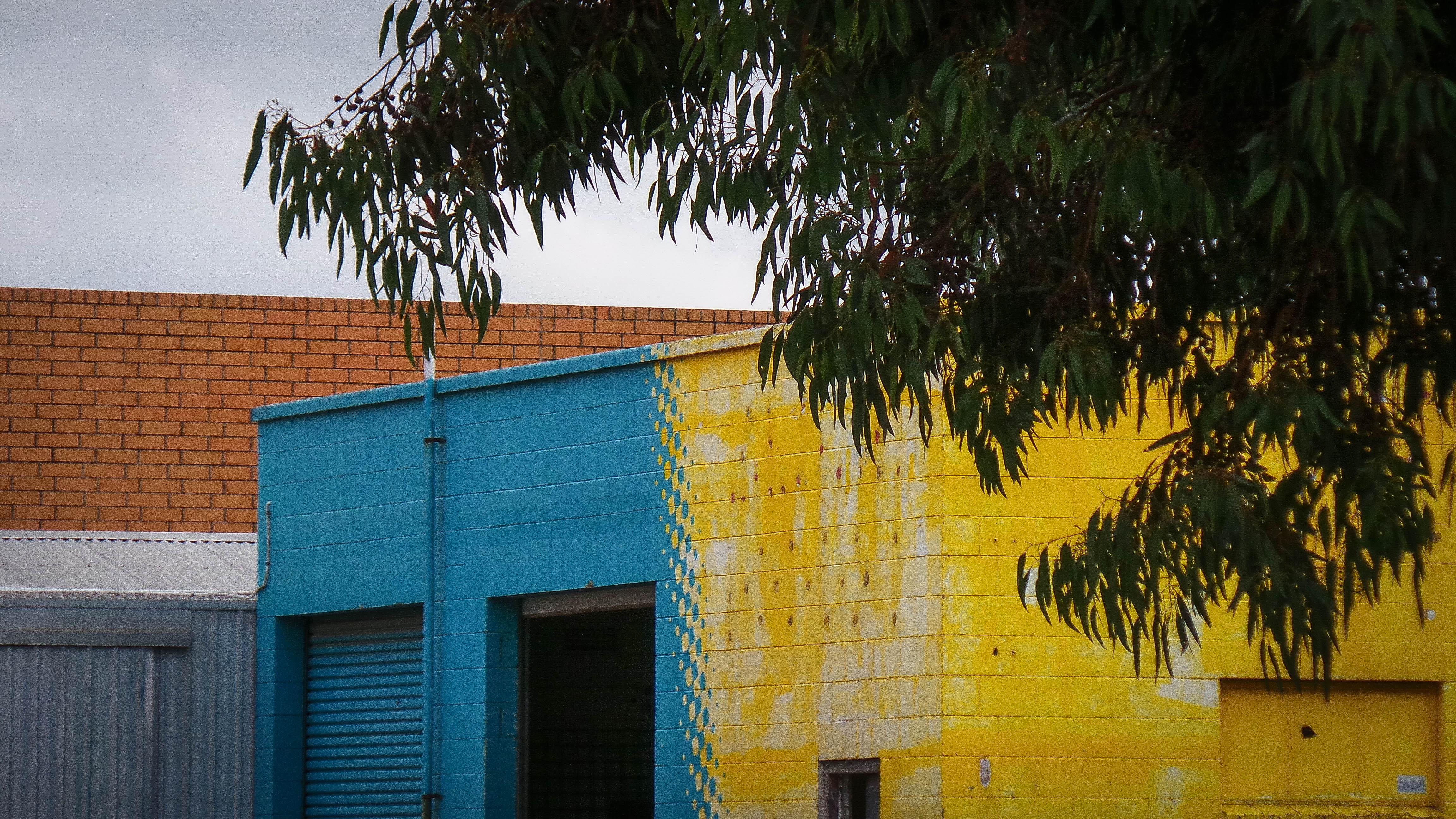 Tür Garage Haus hintergrundbilder blätter fenster die architektur gebäude