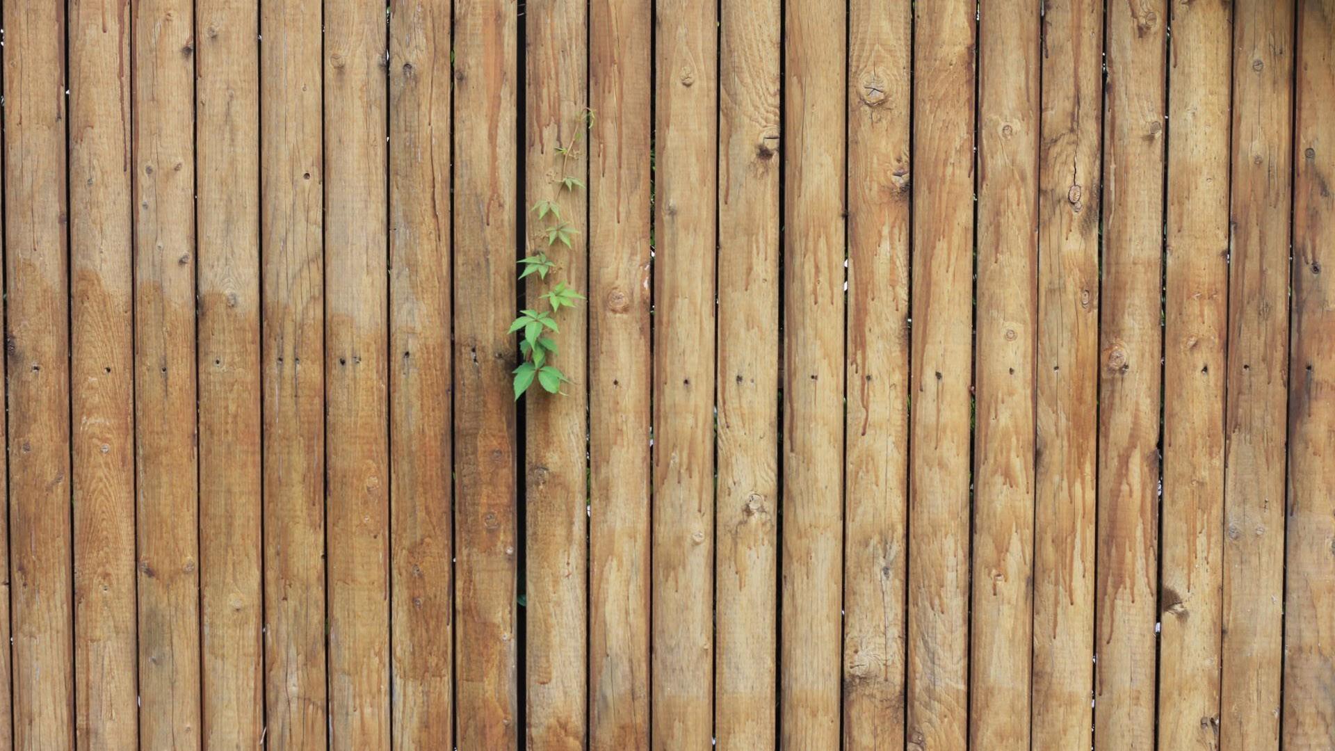 Fondos de pantalla hojas superficie de madera textura - Transferir fotos a madera ...