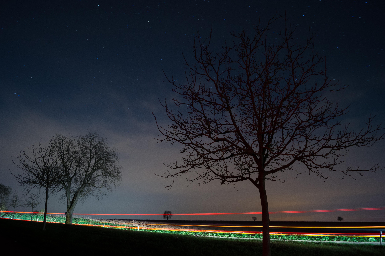 Masaüstü Işık Hafif Boyama Sanat Ampul Gece Boyama Fotoğraf