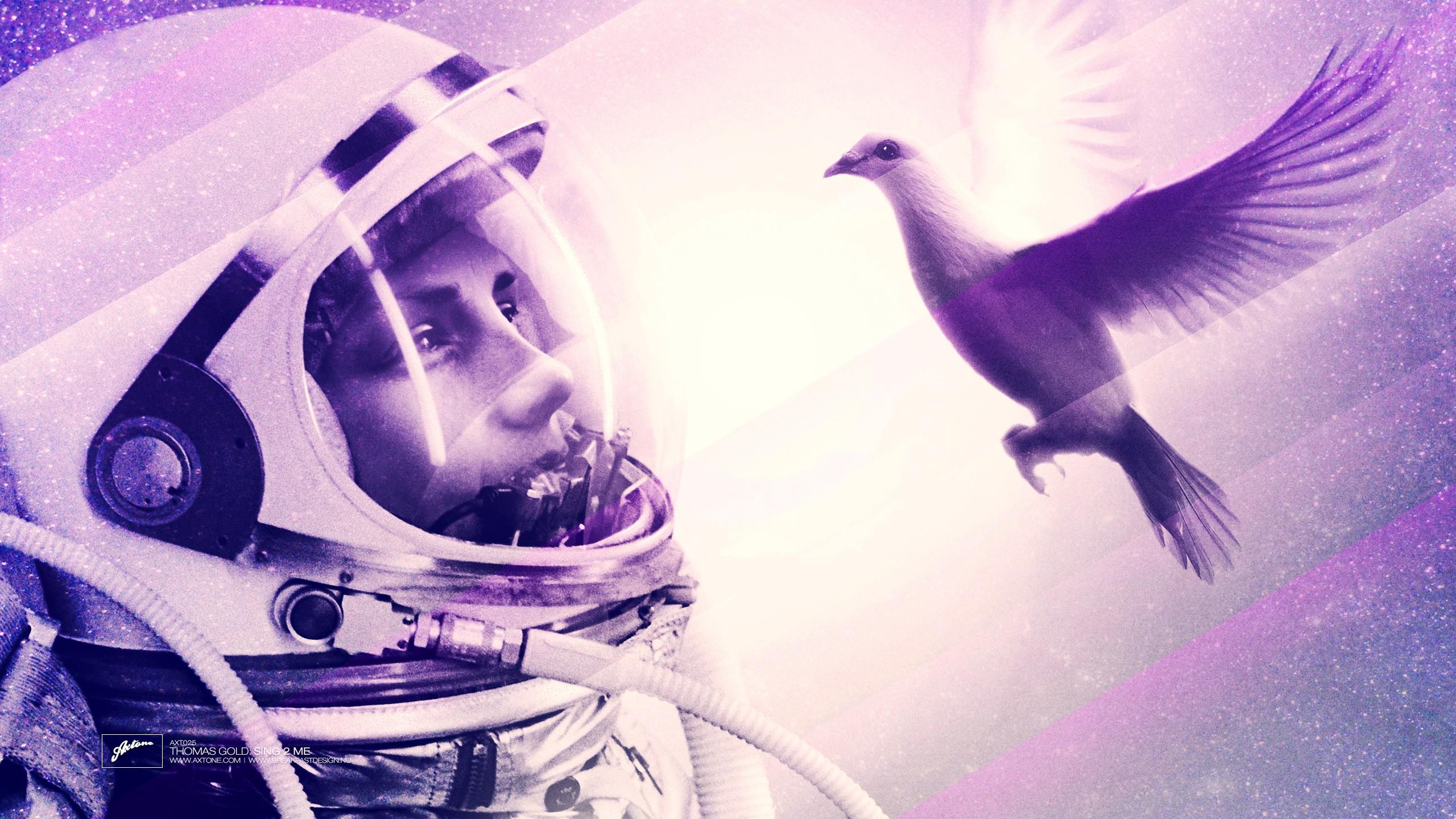 Wallpaper Lights Birds Space Photography Purple Blue