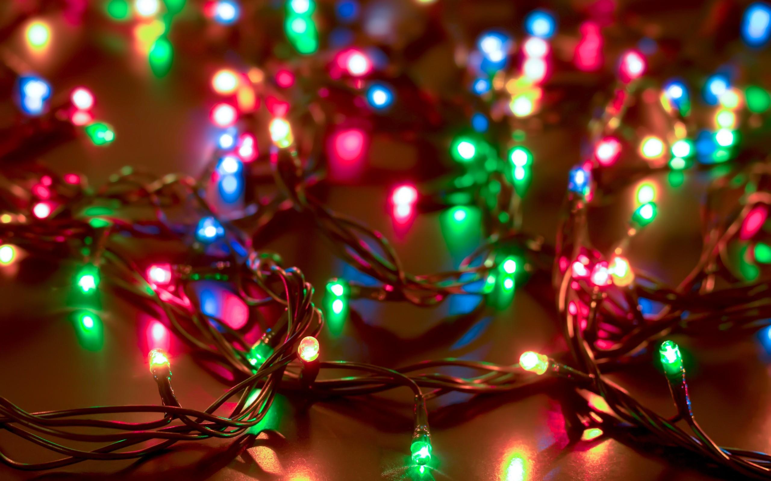 lights depth of field snow branch Christmas Tree circle Christmas New Year christmas lights wires light color christmas decoration 291743