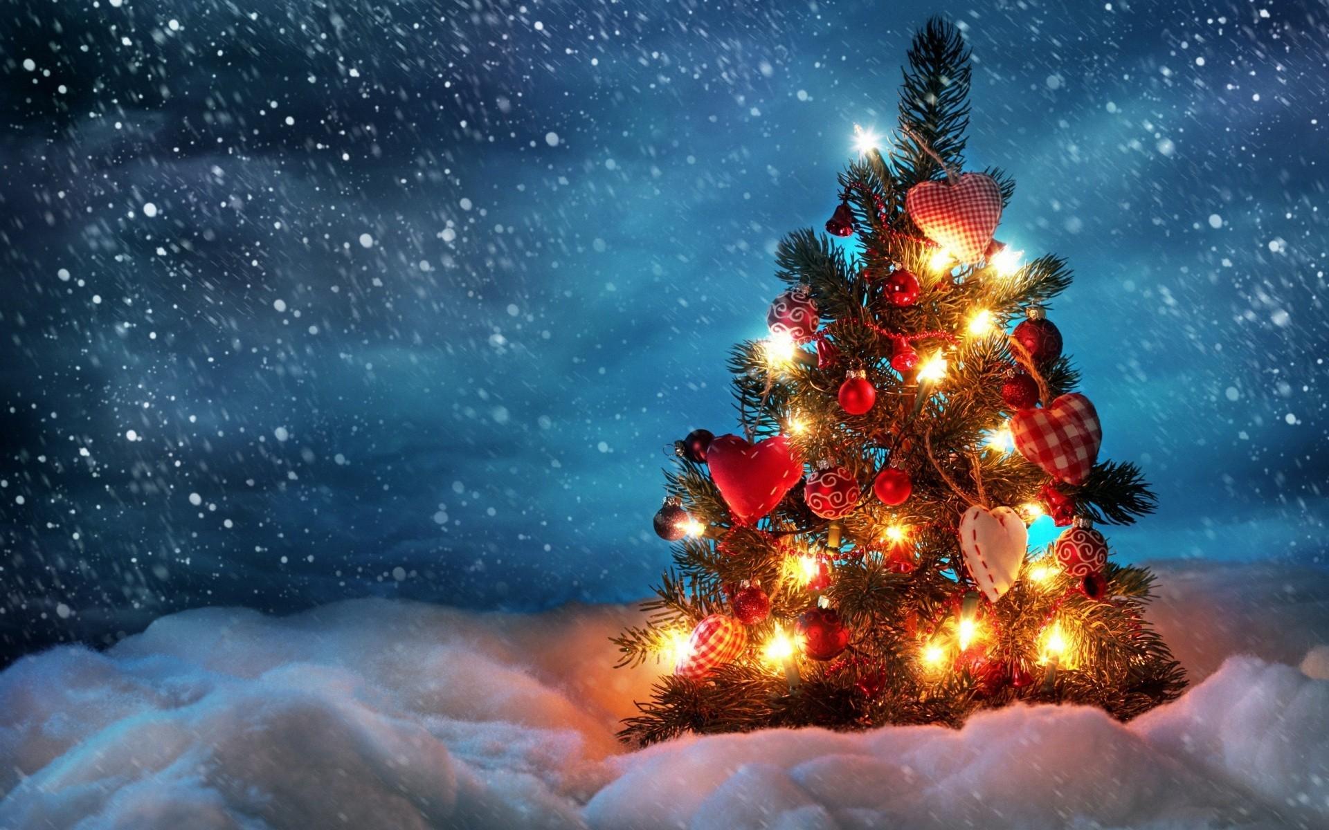 1e0f082551 svetla neba sneh Vianočný stromček Vianoce vianočné dekorácie. 0 0. Zadarmo  na stiahnutie Original
