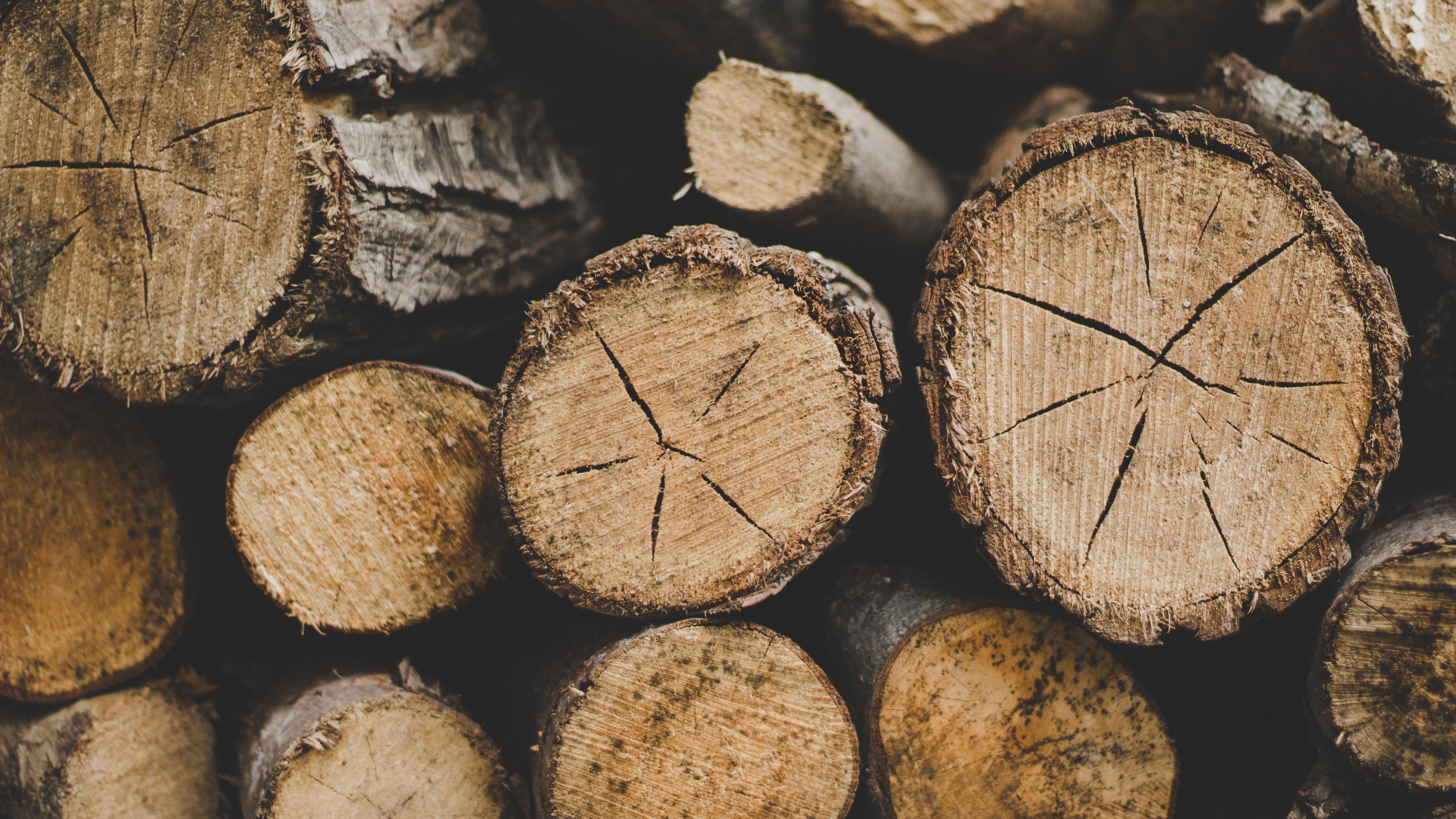 Fondos de pantalla de troncos de madera