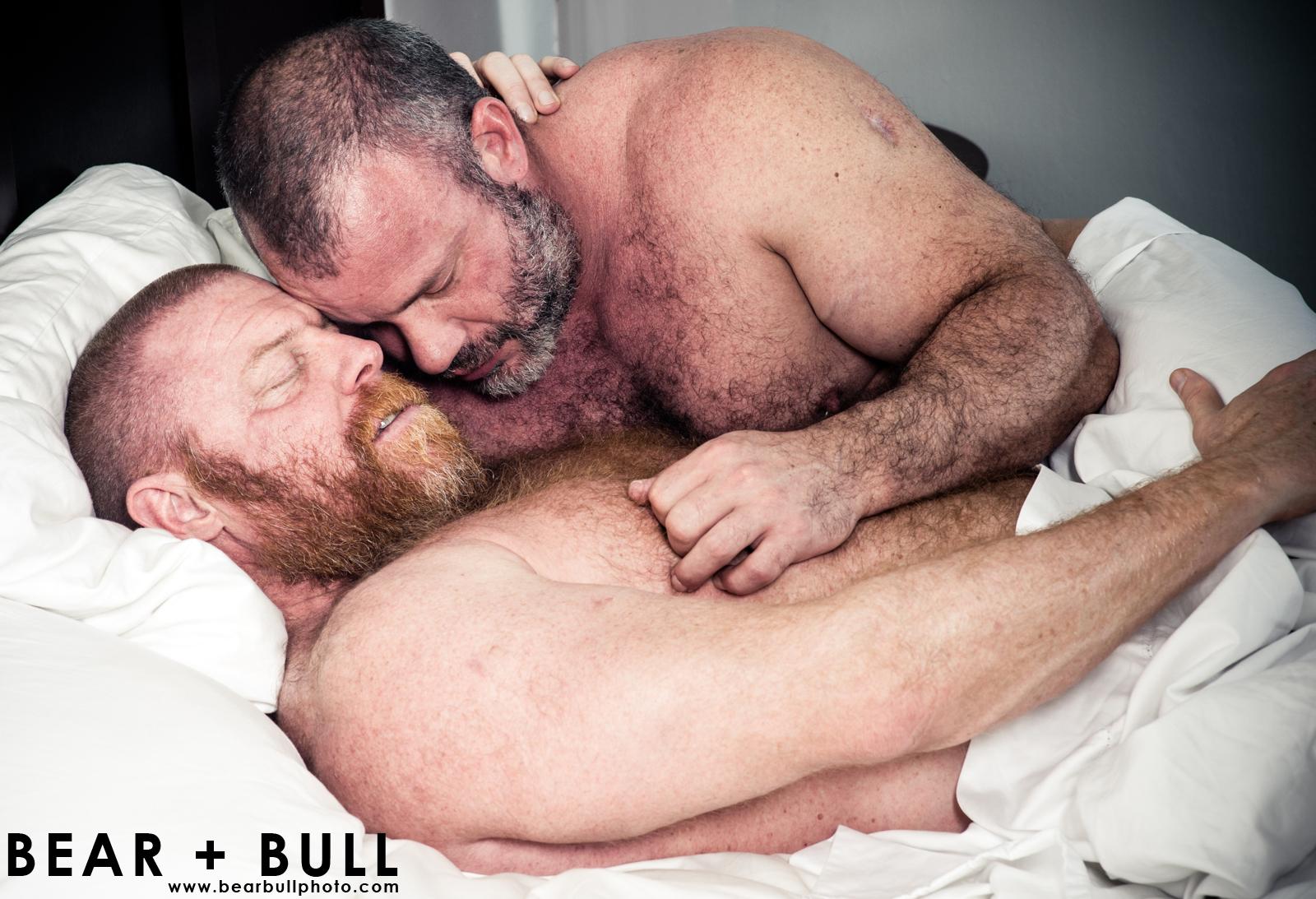 gay-irish-bear