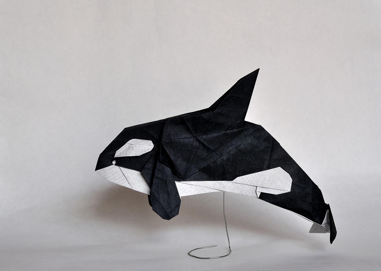 Mar Origami Whale Orca Papiroflexia Killerwhale Ballena Oceano