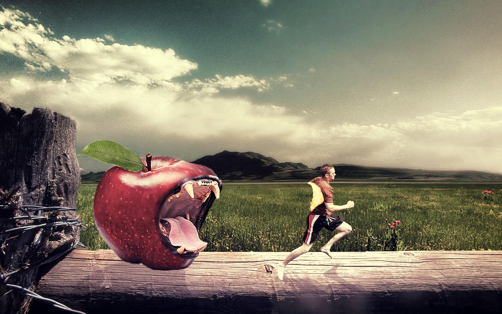 Hình nền : Đàn ông, Ánh sáng mặt trời, nghệ thuật số, Photoshop, Đỏ, nhiếp ảnh, con hổ, táo, buổi sáng, thao tác hình ảnh, Cảm xúc, màu, hoa, ảnh chụp, Hình ...