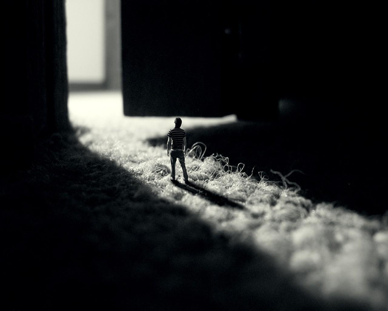 Лилейник белый фото музыкальные