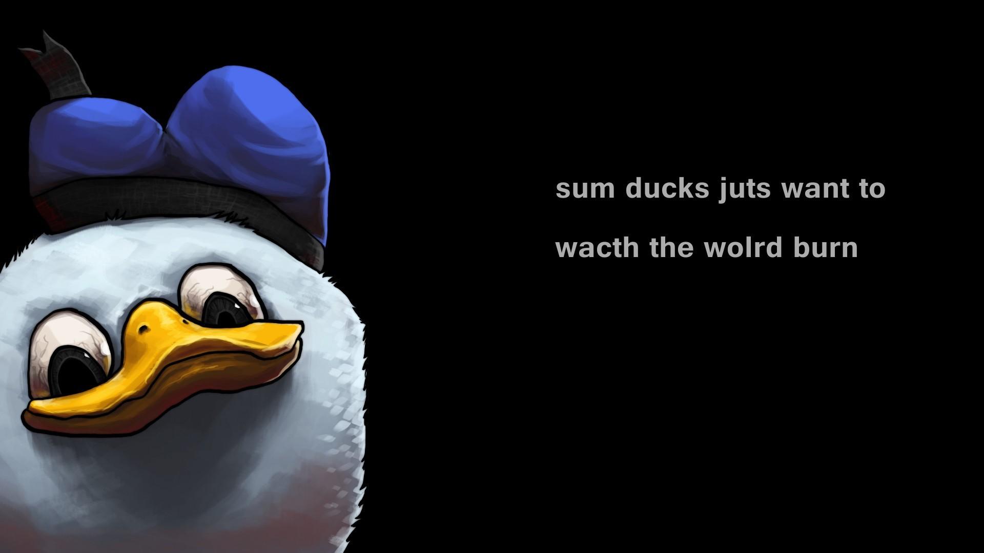デスクトップ壁紙 ミニマリズム タイポグラフィ 漫画 ペンギン