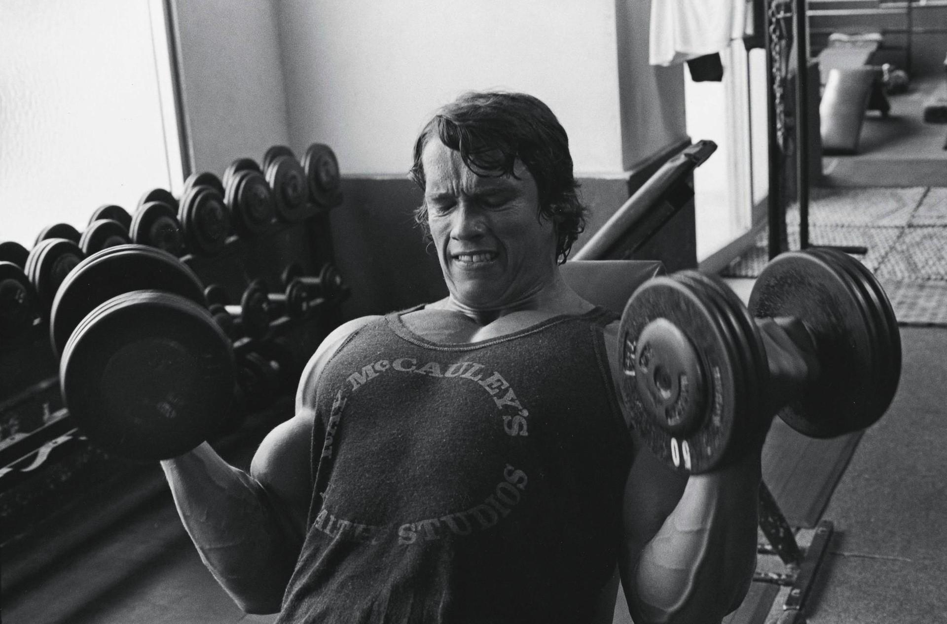 Wallpaper arnold schwarzenegger room bodybuilder gyms