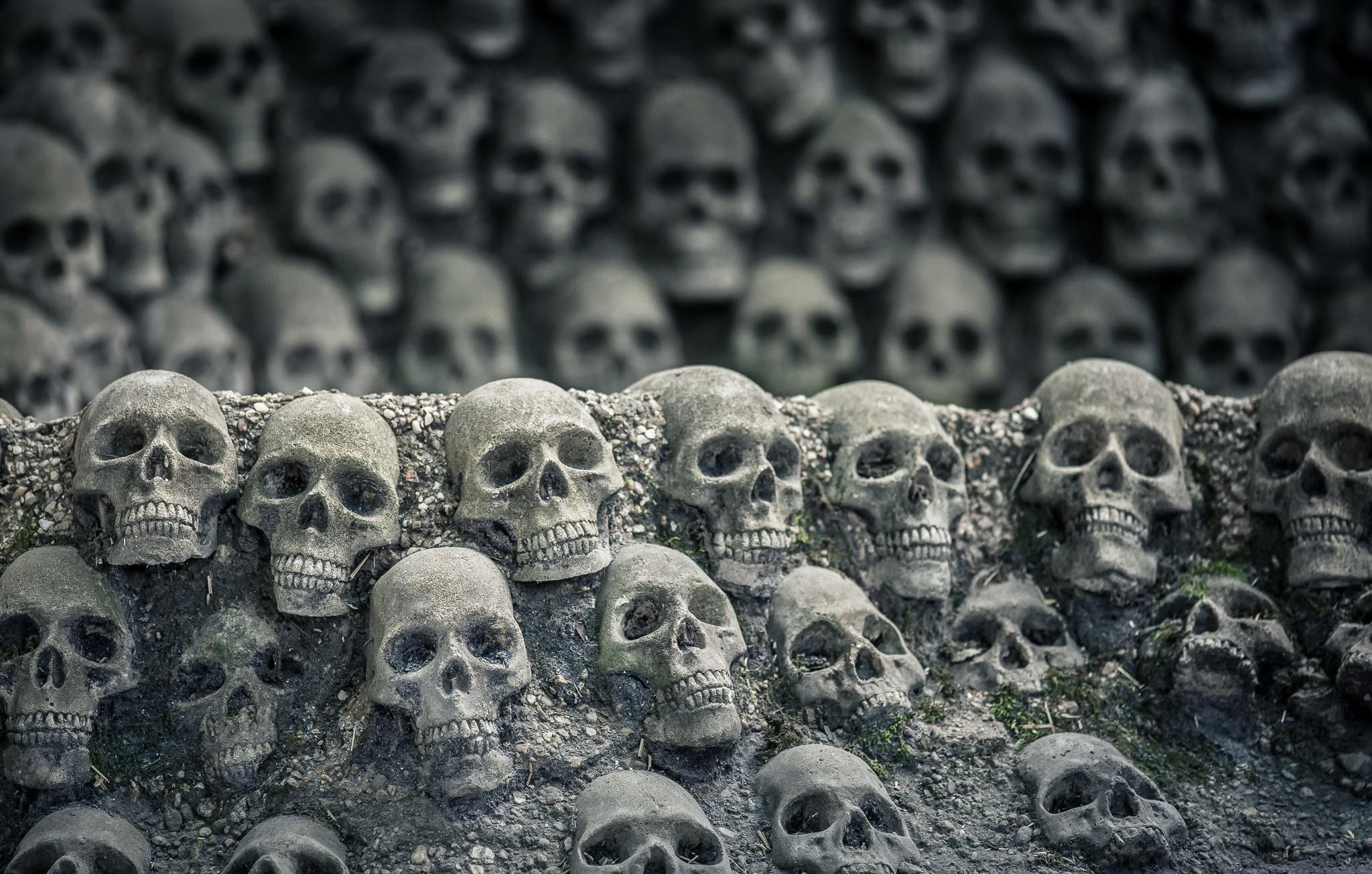 Много костей картинки