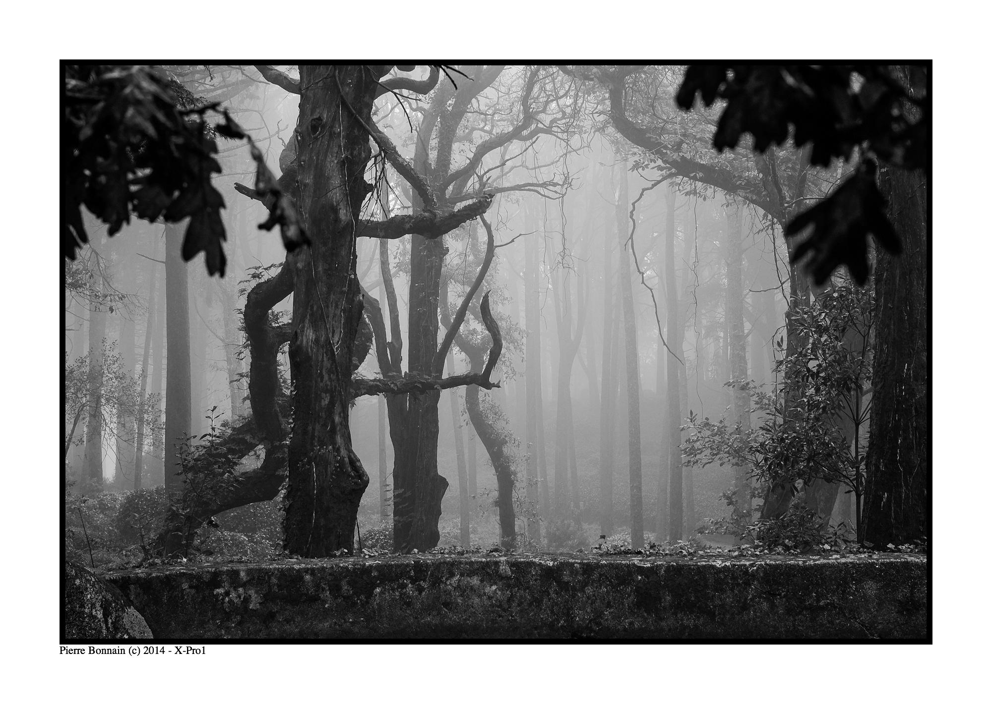 Moderne Kunst Bilder Schwarz Weiss ~ Hintergrundbilder zeichnung einfarbig verlassen text