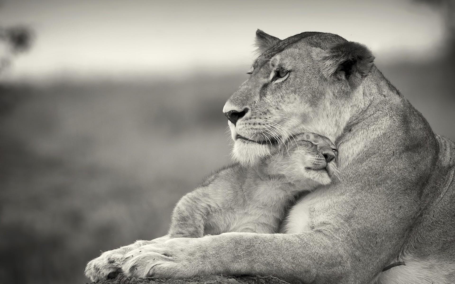 Красивые и интересные картинки про любовь