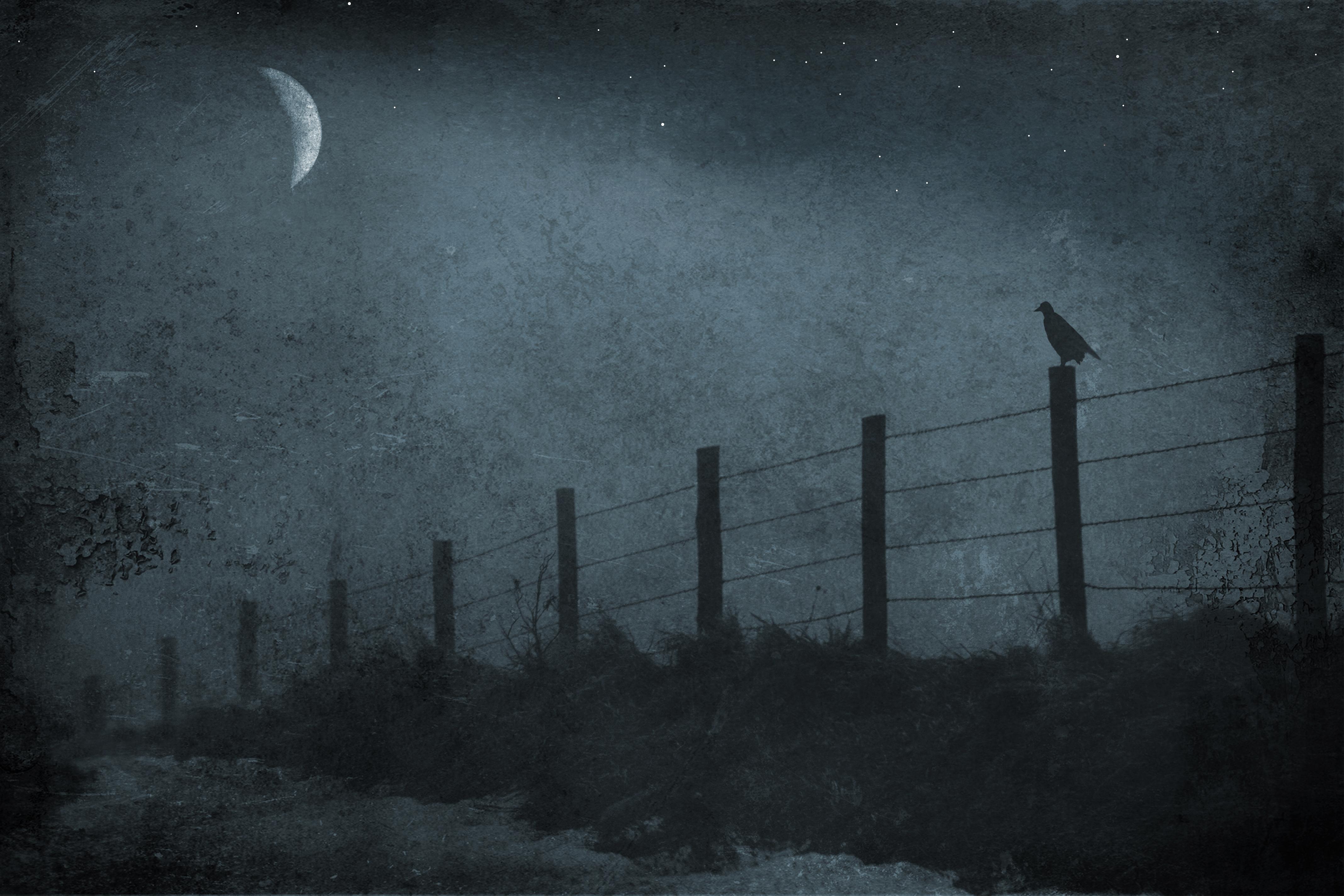 Wallpaper Monochrome Night Stars Moon Canon Moonlight Texture Atmosphere Fence Lyrics Weather Elitegalleryaoi Darkness Blackbird Idream
