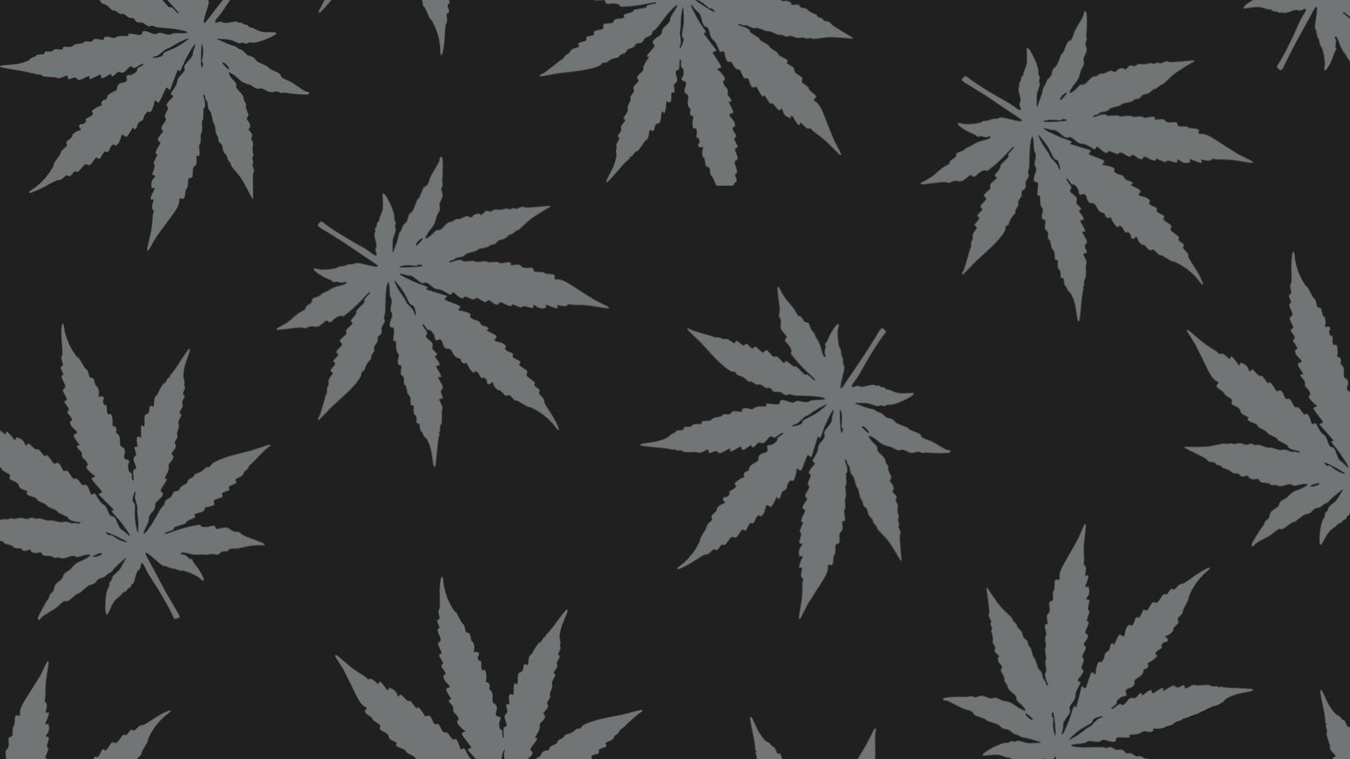 monochrome plants artwork branch symmetry frost pattern cannabis tree leaf plant design black and white monochrome photography land plant flowering plant maple tree maple leaf 339790