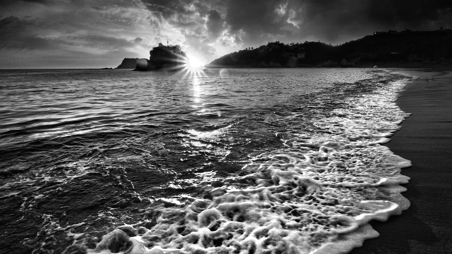 изумительного красивые картинки лето черно белое материала тем для