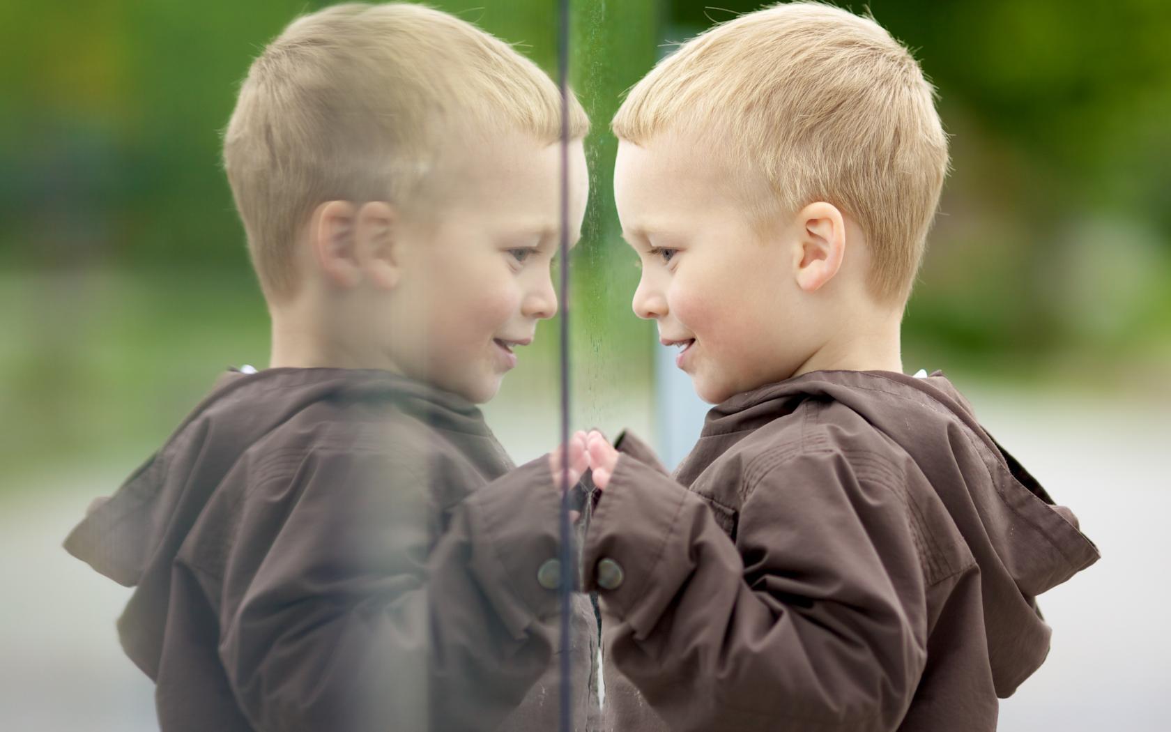 картинки дразнилка в зеркало таком случае накладные