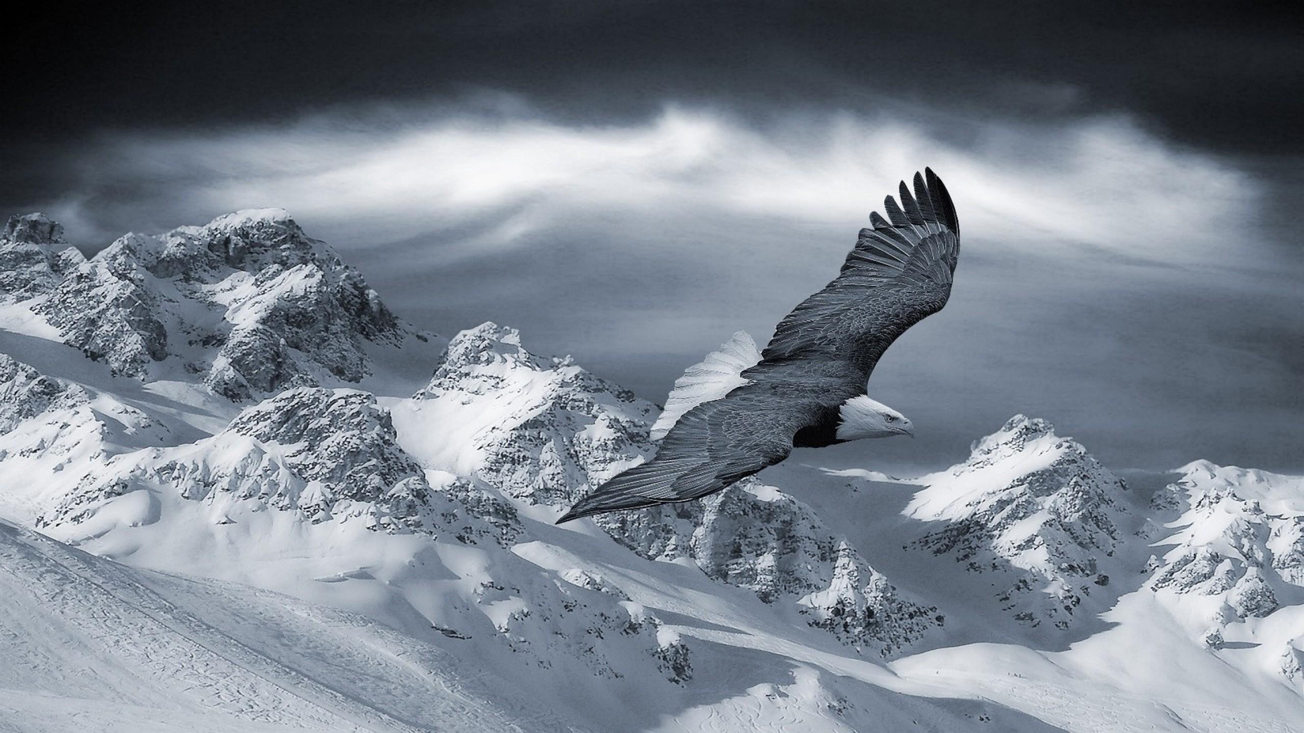 hintergrundbilder kostenlos berge