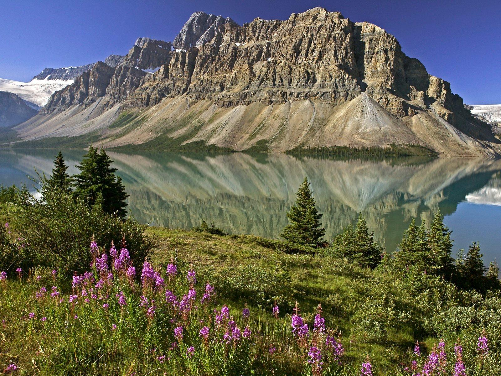 самые красивые горы в мире фото америке собаки