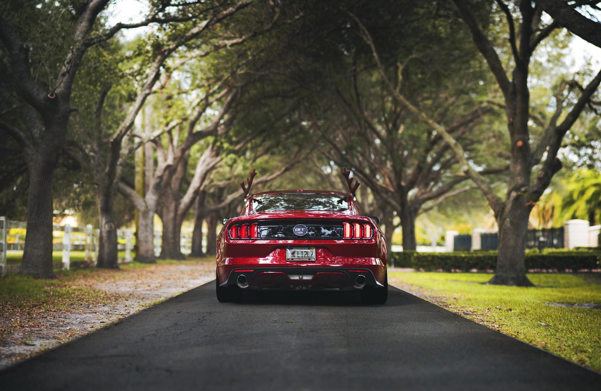 Обои стиль, ретро, вид сзади, ford, дорога, гравий ...