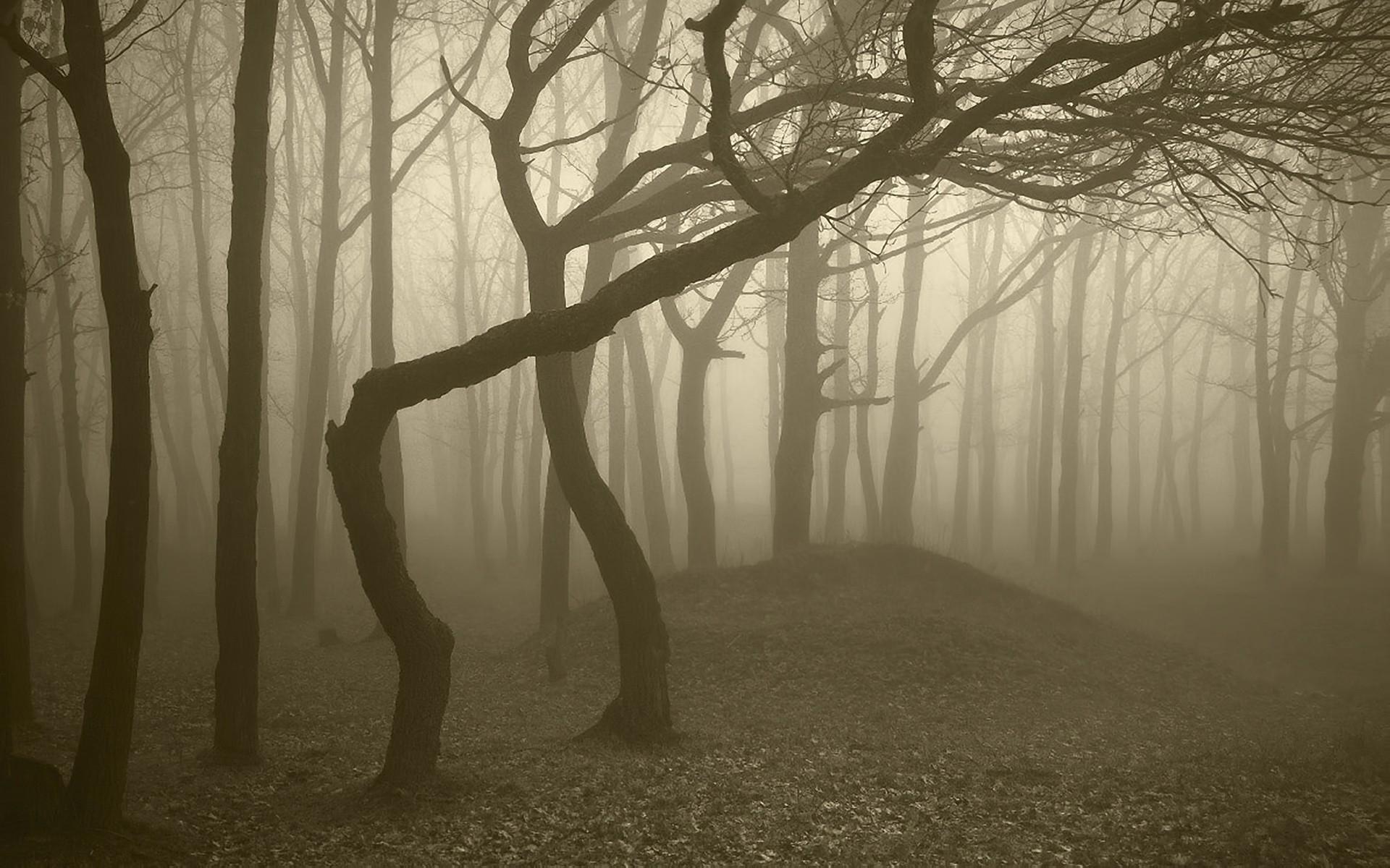 Картинки страшный пейзаж