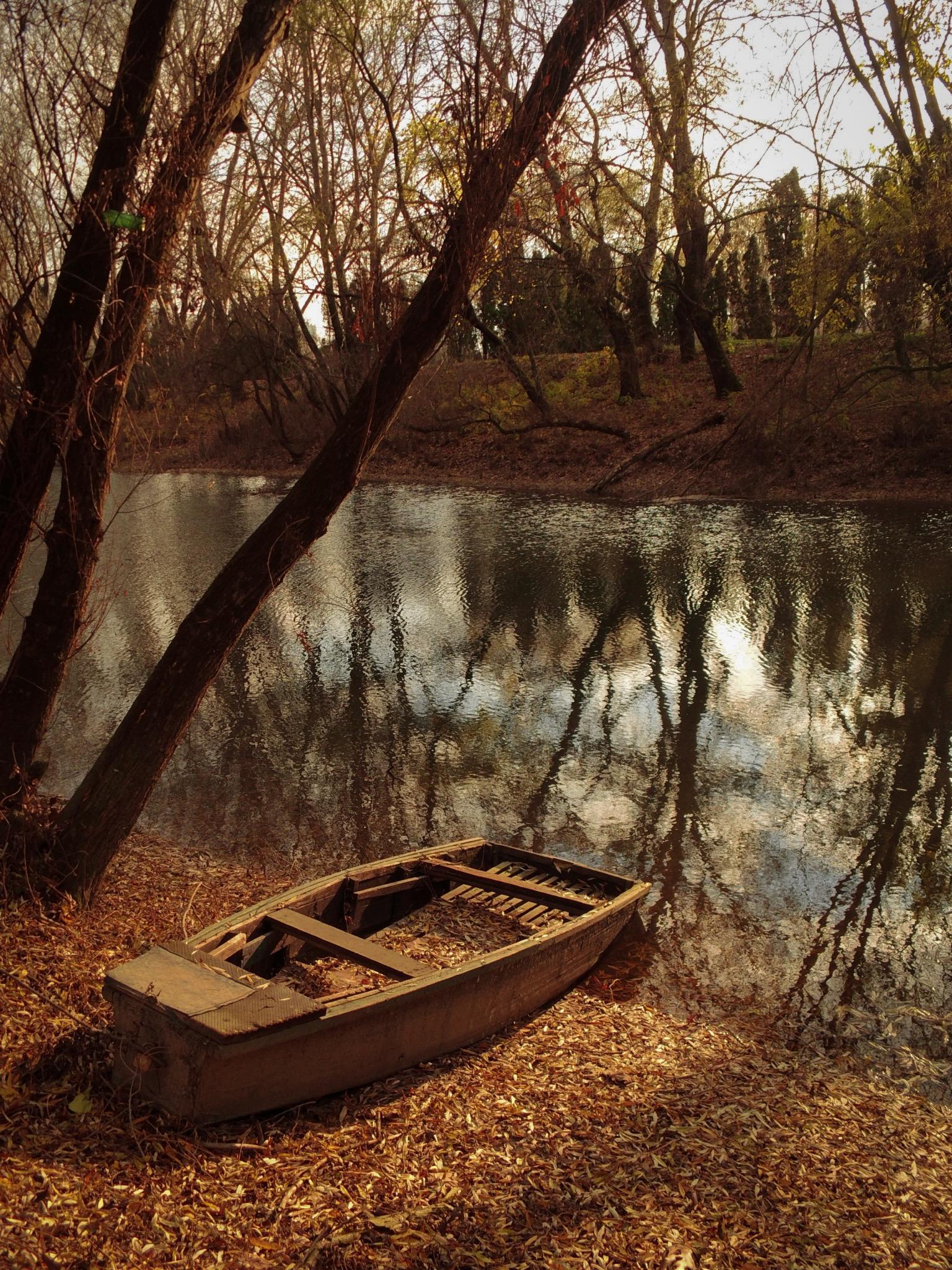 Fondos De Pantalla Naturaleza Bosque Agua 1536x2048 Kriszphoto