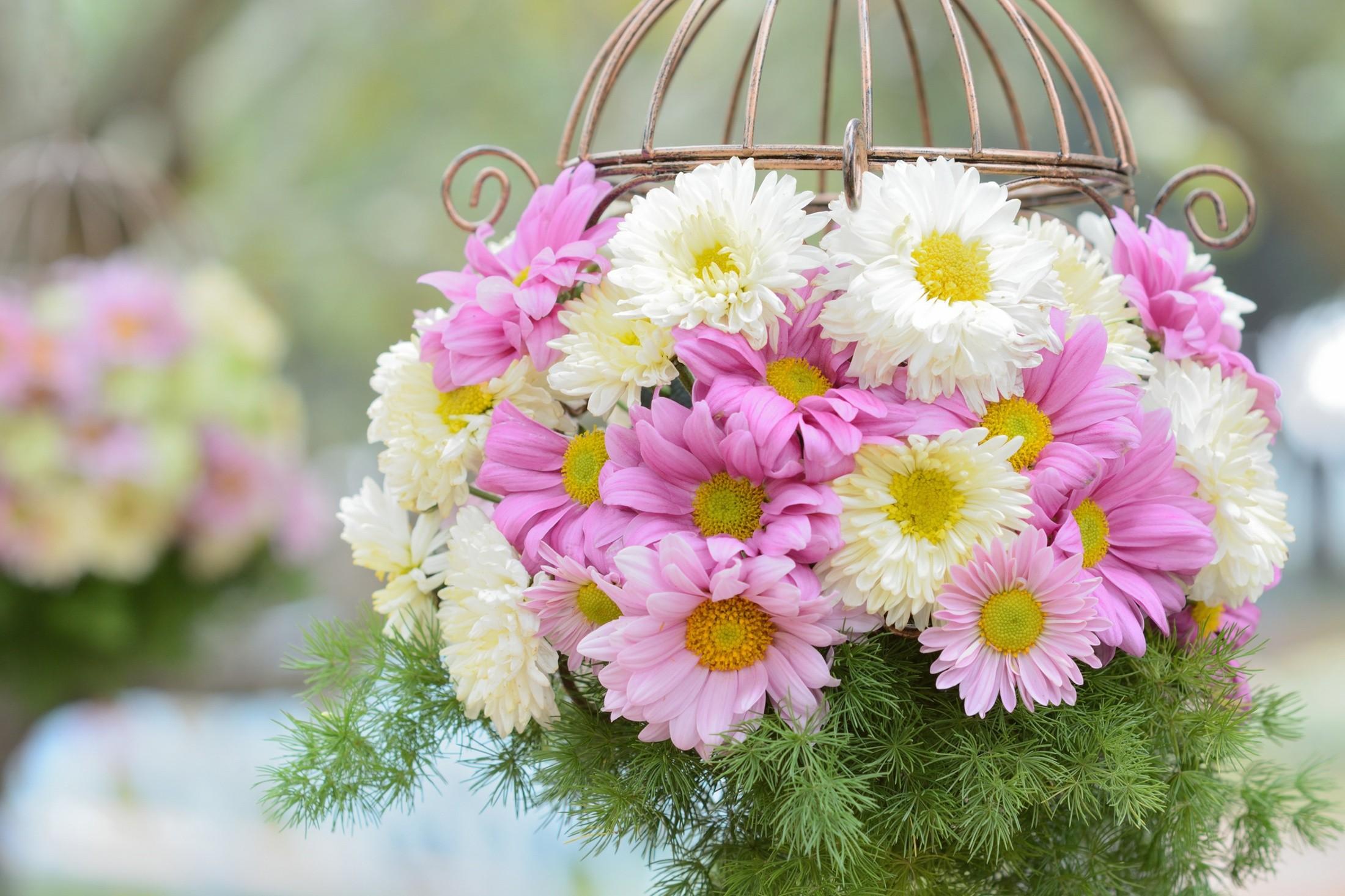 Красивая открытка с природой цветы для мамы