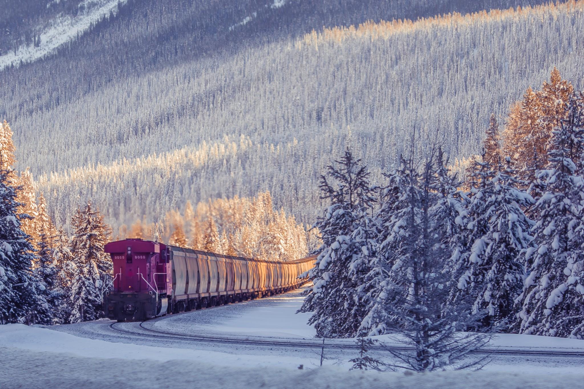 подобным фотографии поездов зимой него попали все