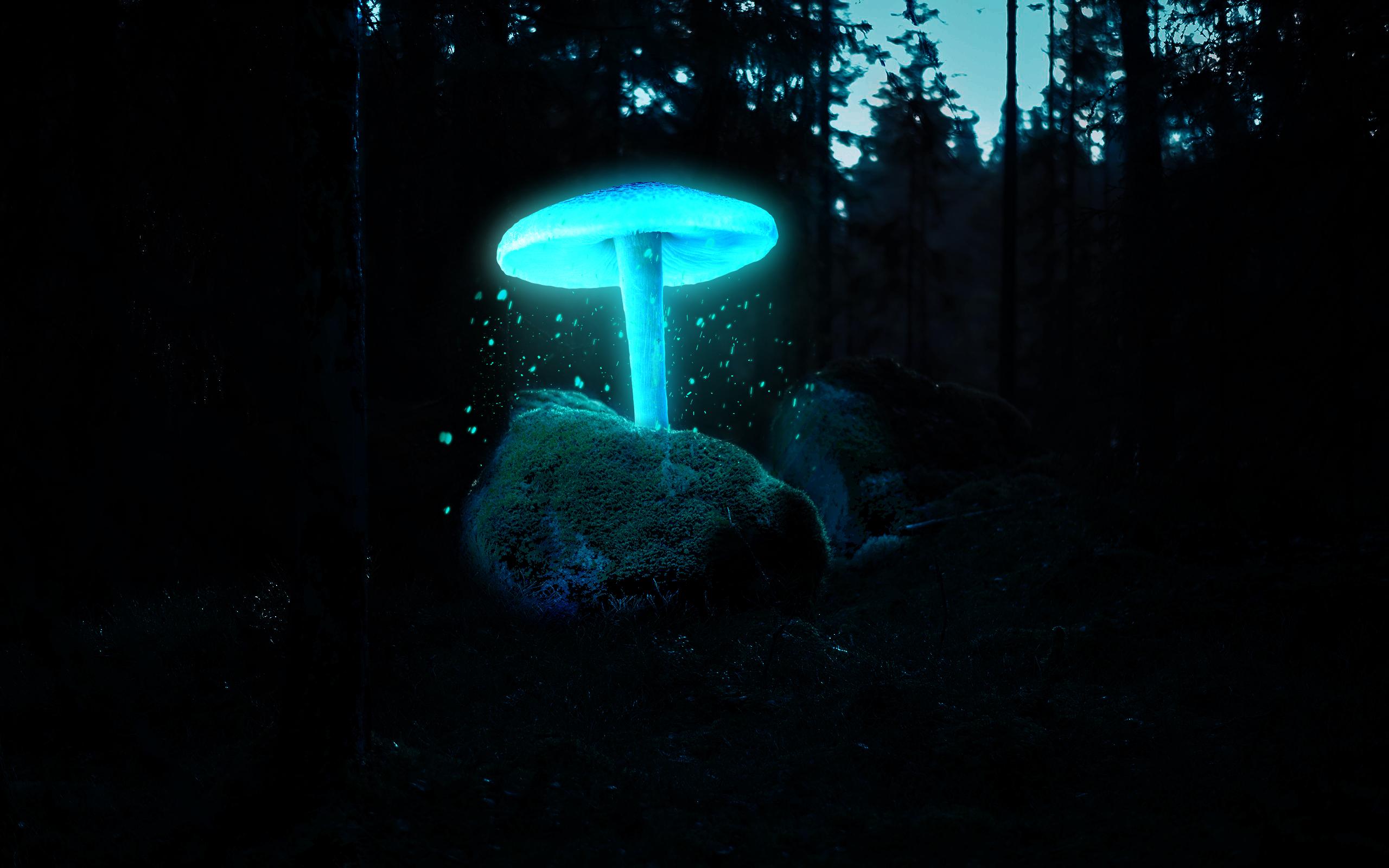 neon blue 1851407