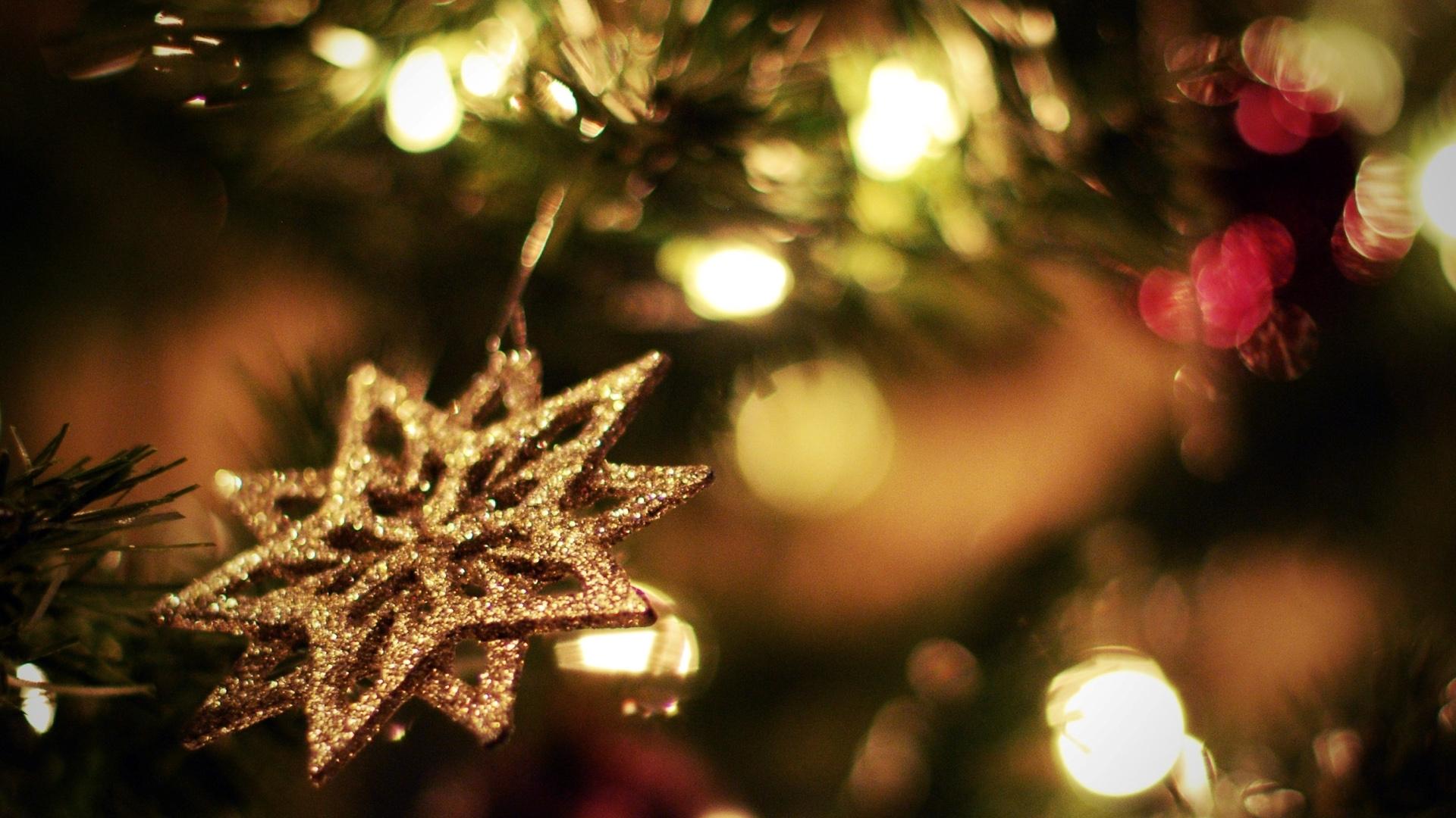Sfondi Natalizi Luminosi.Sfondi Notte Ramo Albero Di Natale Vacanza Luci Di