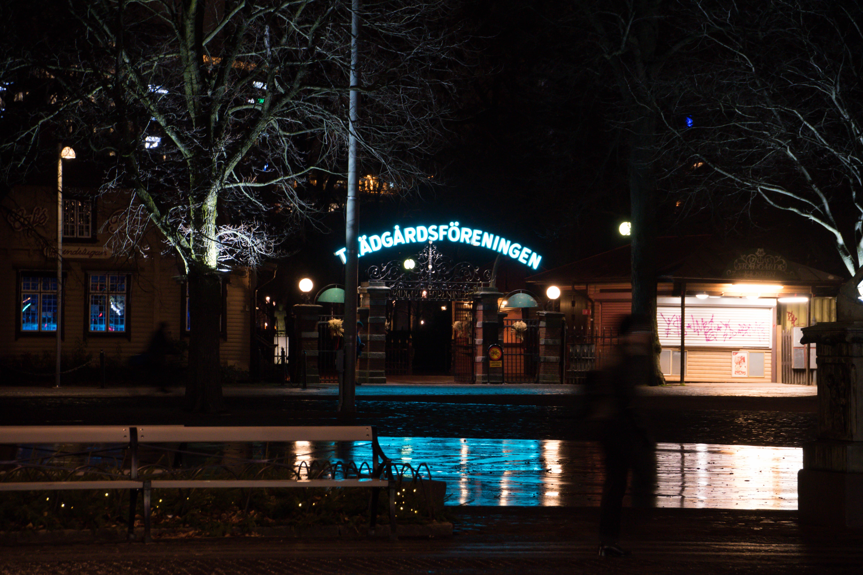 Download Wallpaper Night Evening - night-evening-Christmas-Sweden-christmas-lights-Sverige-light-downtown-outdoor-cityview-lighting-december-se-streetview-gothenburg-g-teborg-v-strag-talandsl-n-kungsportsavenyn-darkness-christmas-decoration-415689  HD-76422.jpg