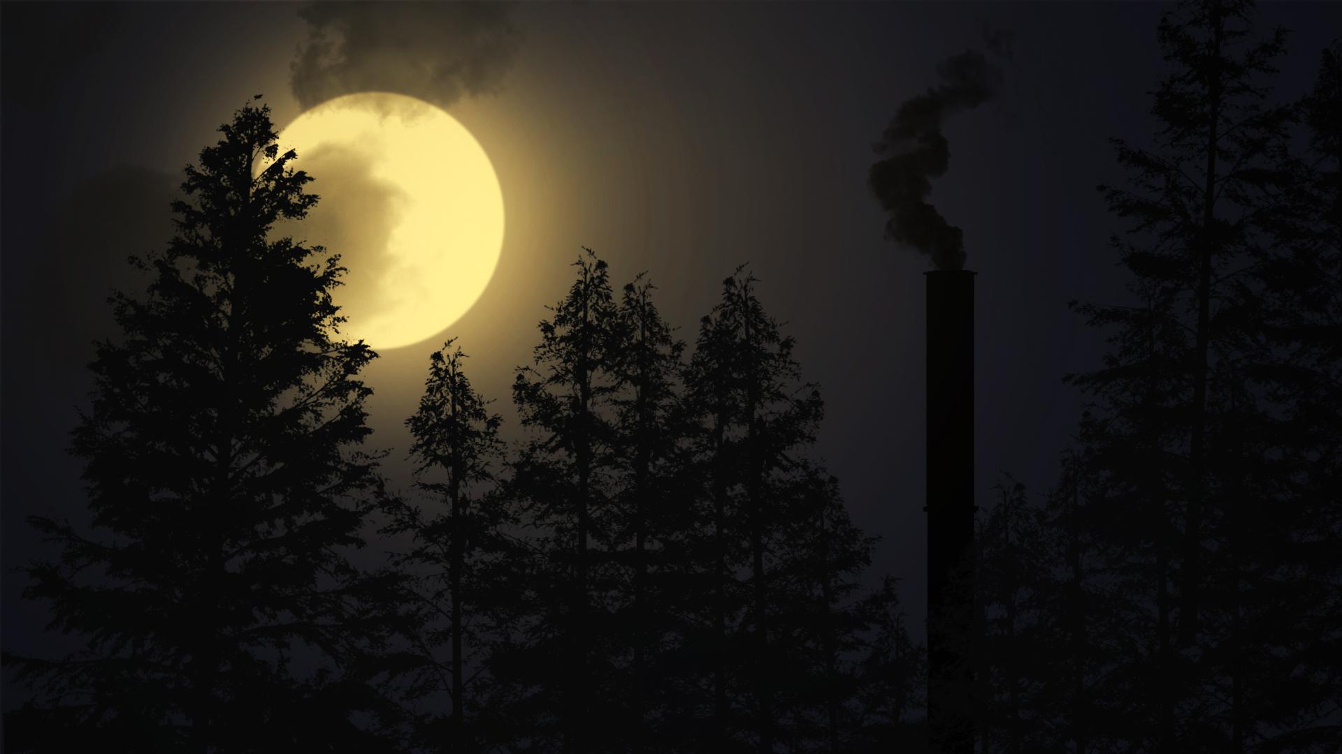 Fondos De Pantalla : Noche, Rayos De La Luna, Paisaje